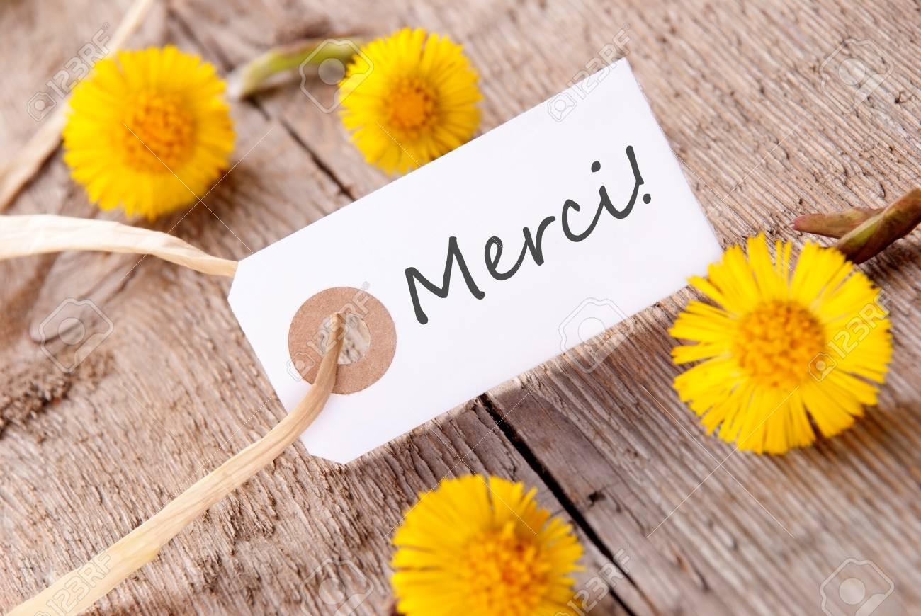 The french word merci which means thanks on a white banner stock the french word merci which means thanks on a white banner with yellow flowers mightylinksfo Images