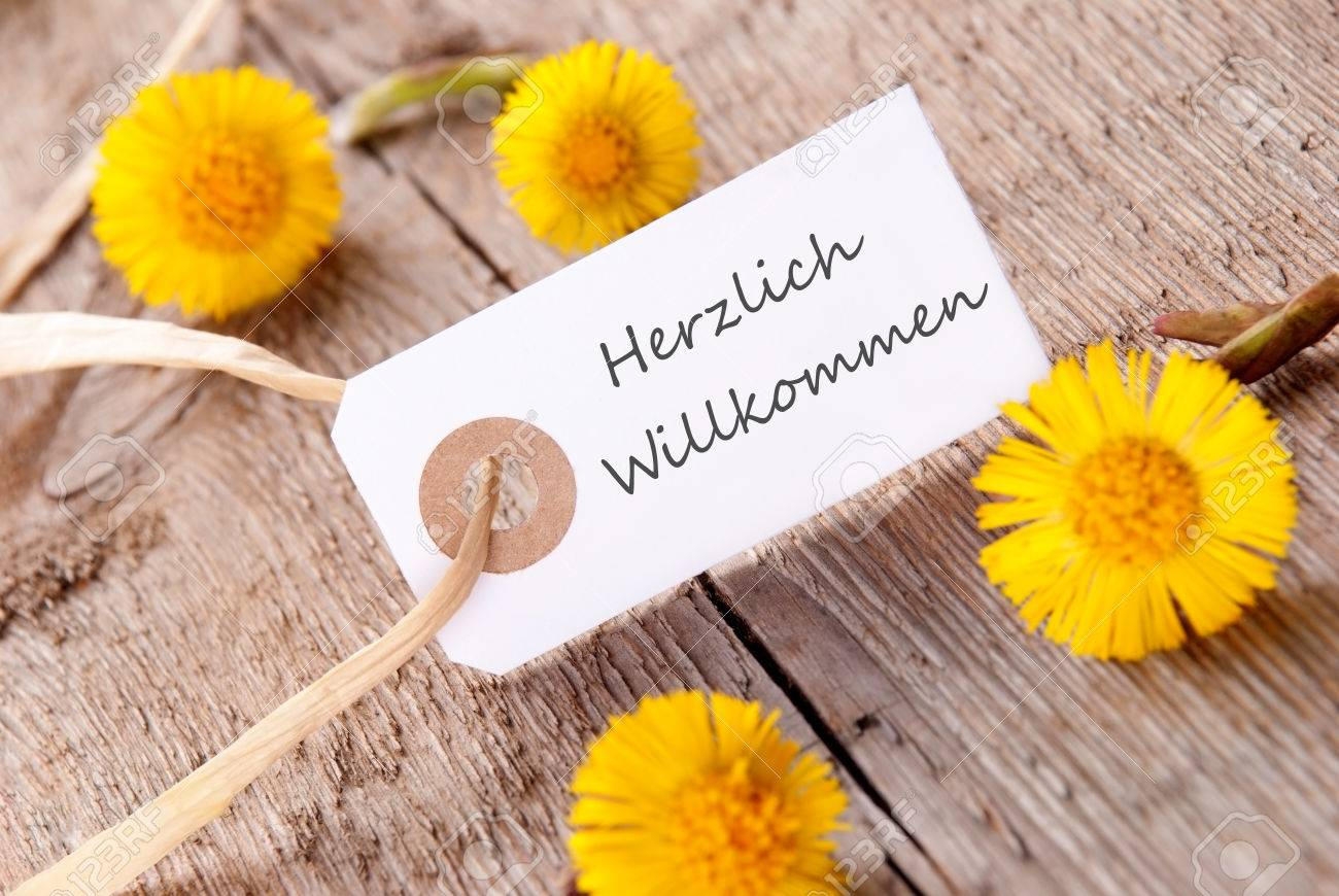 White banner with the german words herzlich willkommen which stock stock photo white banner with the german words herzlich willkommen which means welcome with yellow flowers mightylinksfo