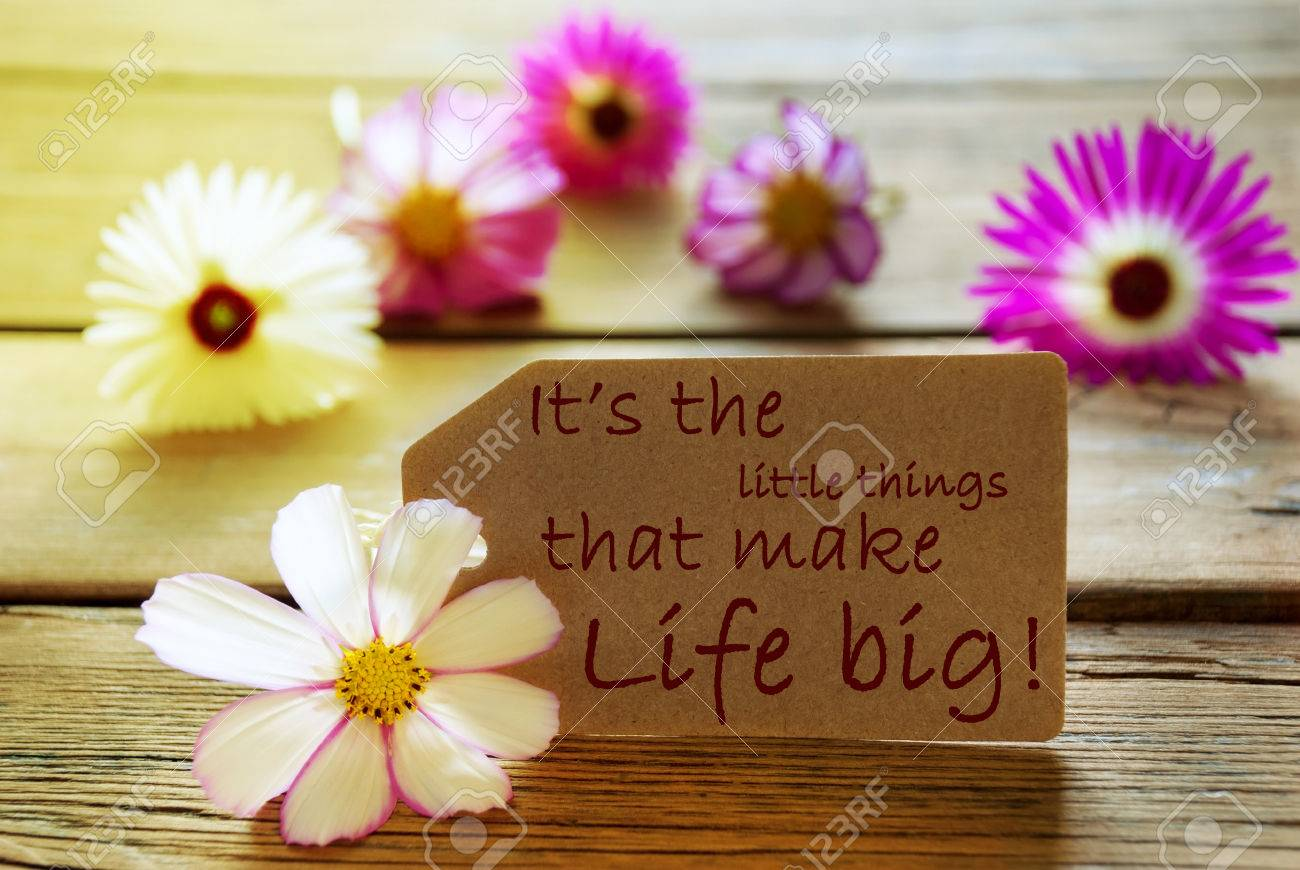 Brown Label With Sunny Yellow Effect With Life Quote Its The Stock
