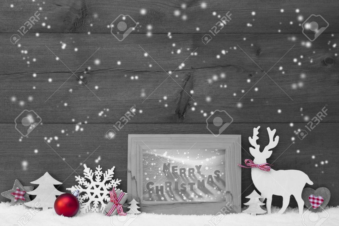 Black and white christmas decoration with reindeer christmas trees snowflakes red ball on snow picture