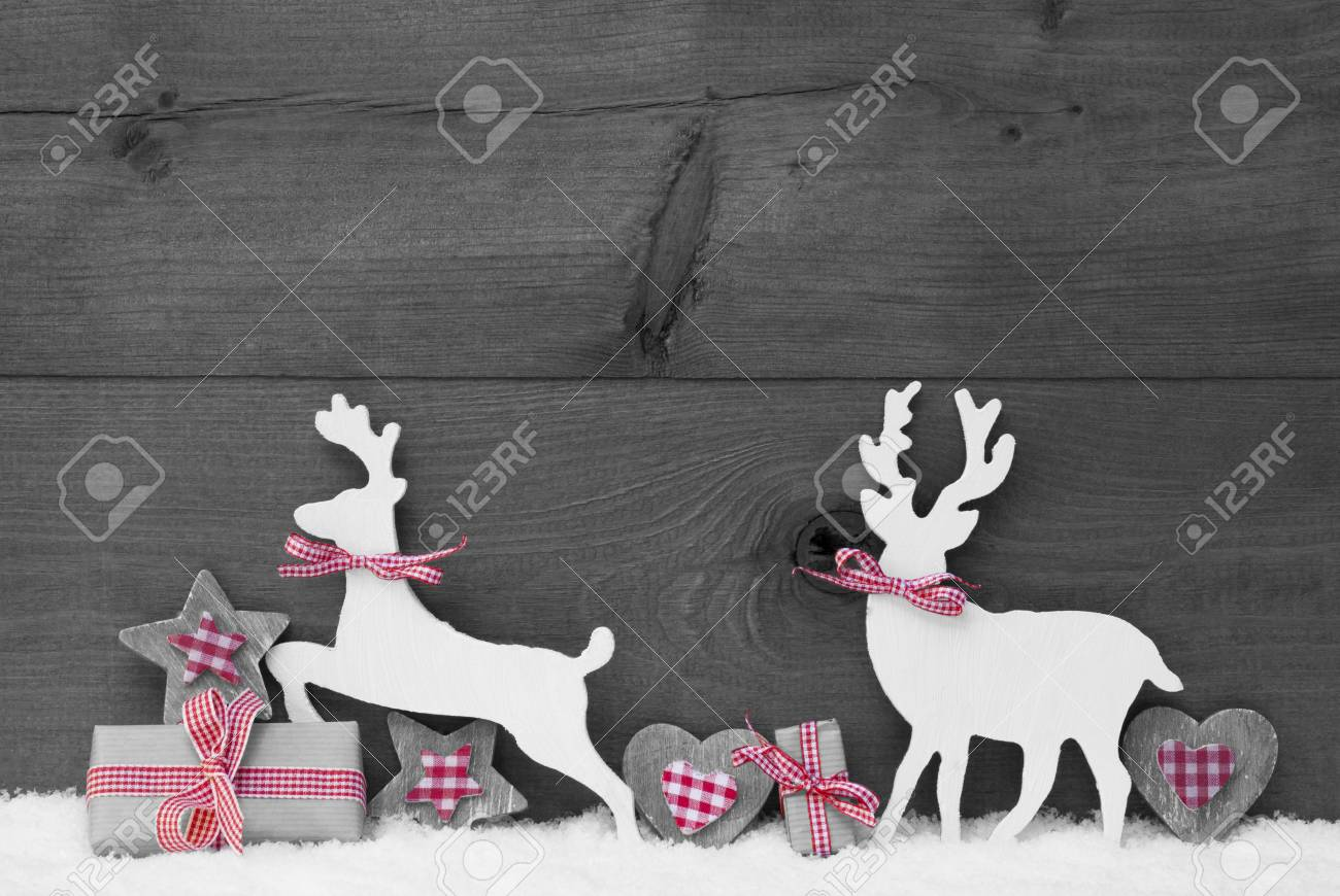Christmas decoration with reindeer couple in love on white snow christmas gift present