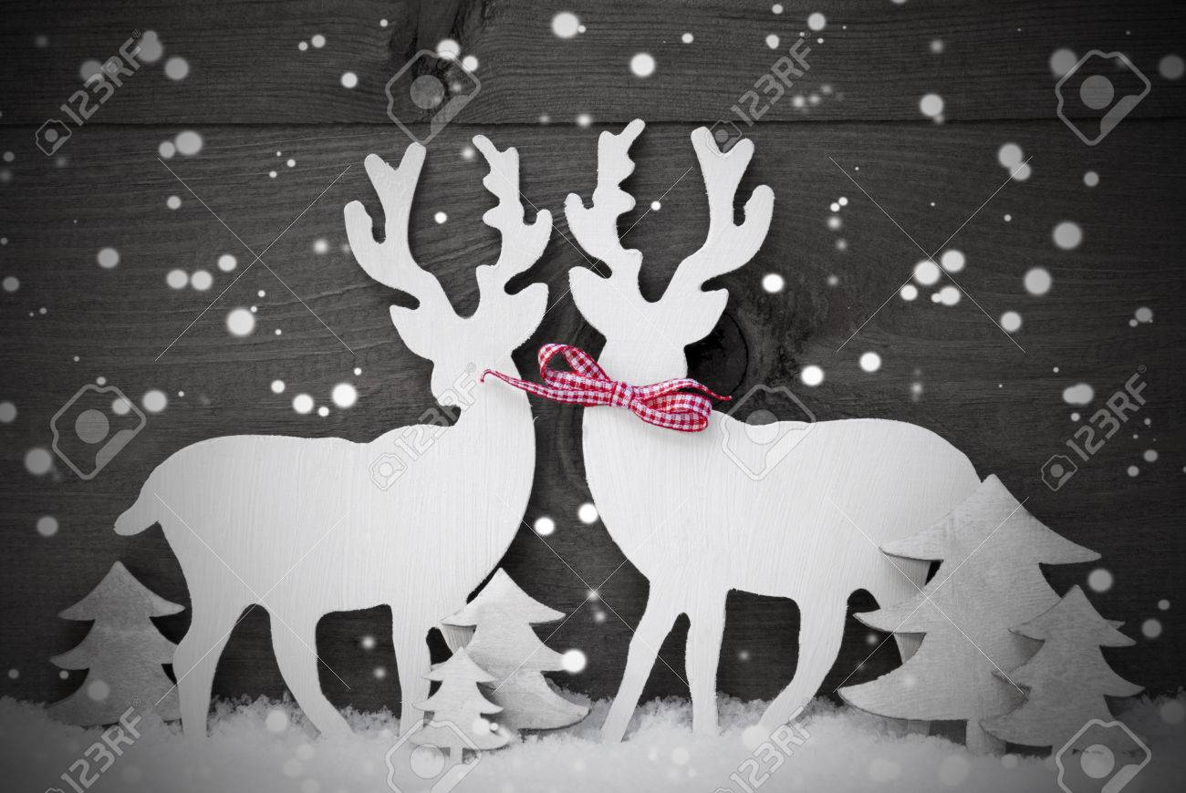 Gray christmas decoration reindeer couple in love on white snow snowflakes red ribbon