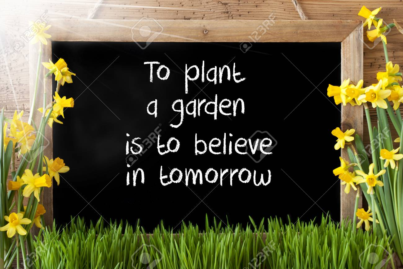 Blackboard With English Quote To Plant A Garden Is To Believe