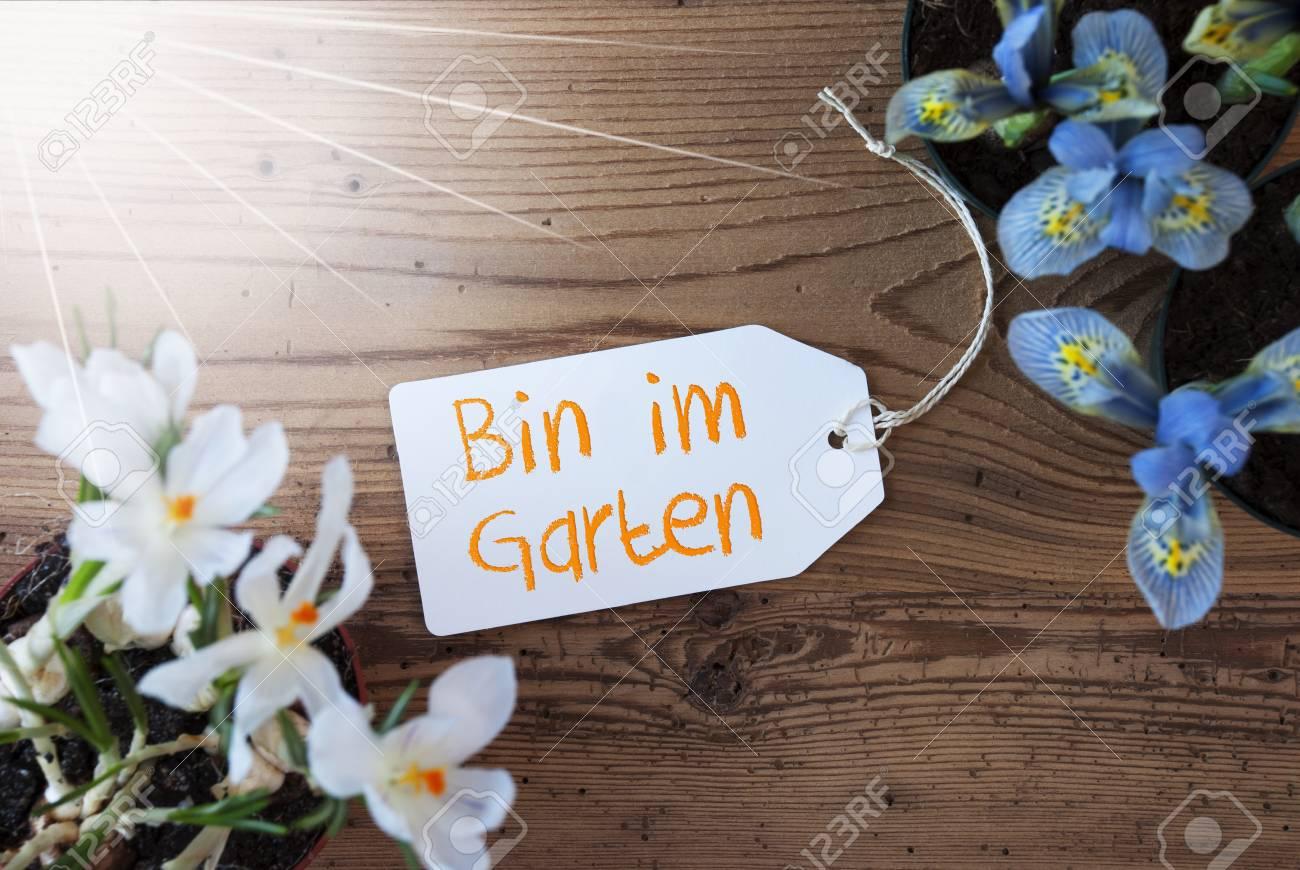 Sonnige Blumen Aufkleber Bin Im Garten Bedeutet Im Garten