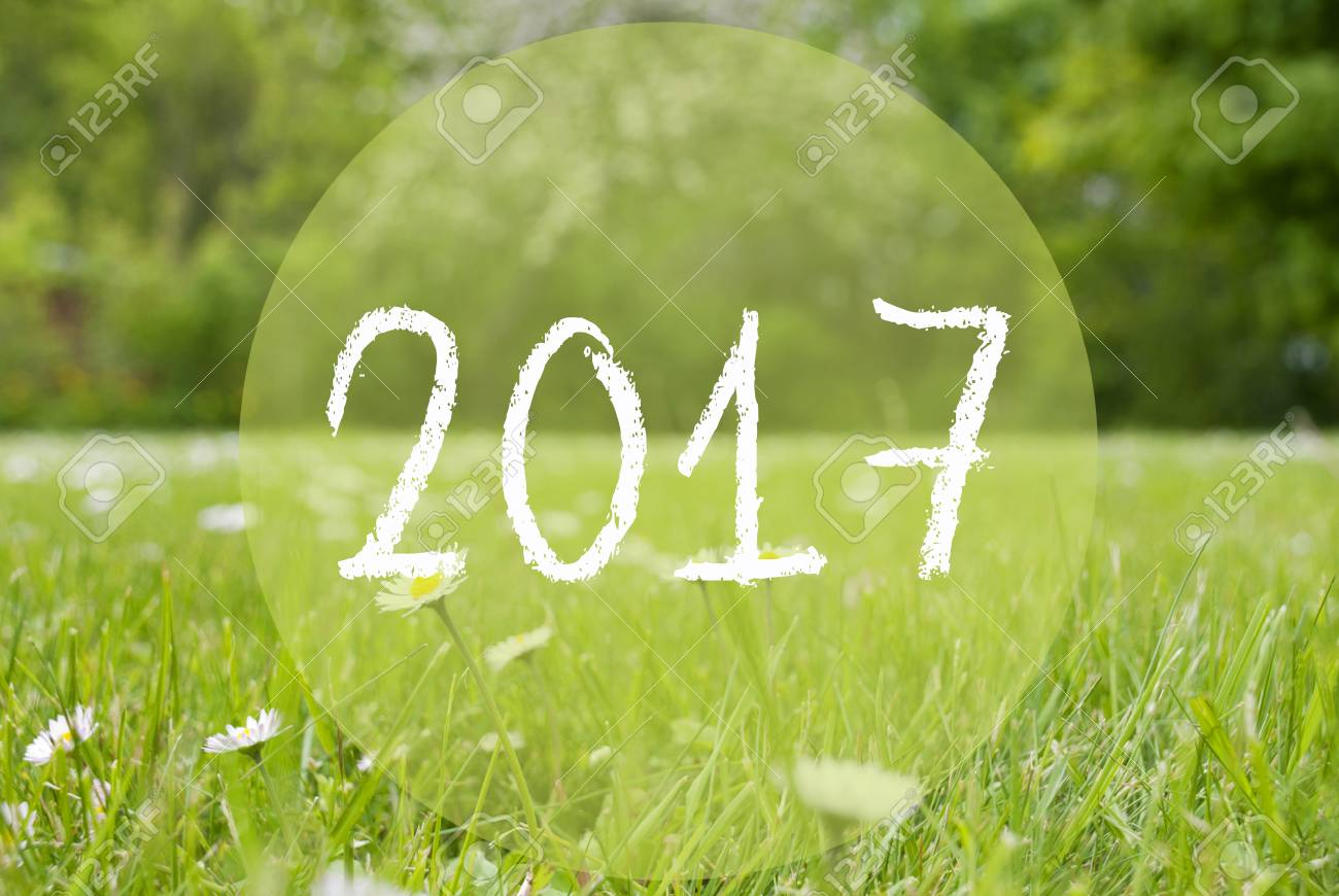 Text 2017 For Happy New Year Greetings Spring Or Summer Gras