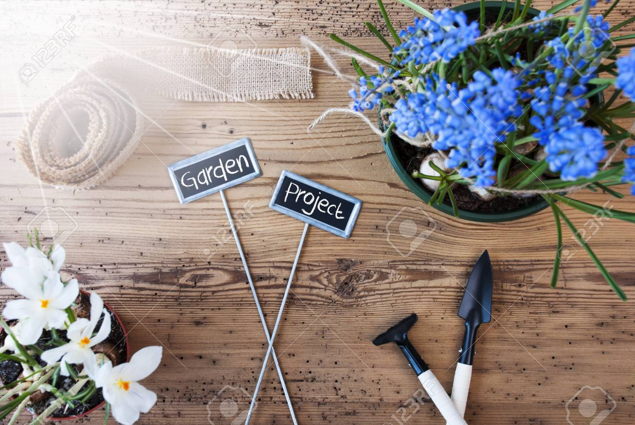 Two Signs With English Text Garden Project. Sunny Spring Flowers ...