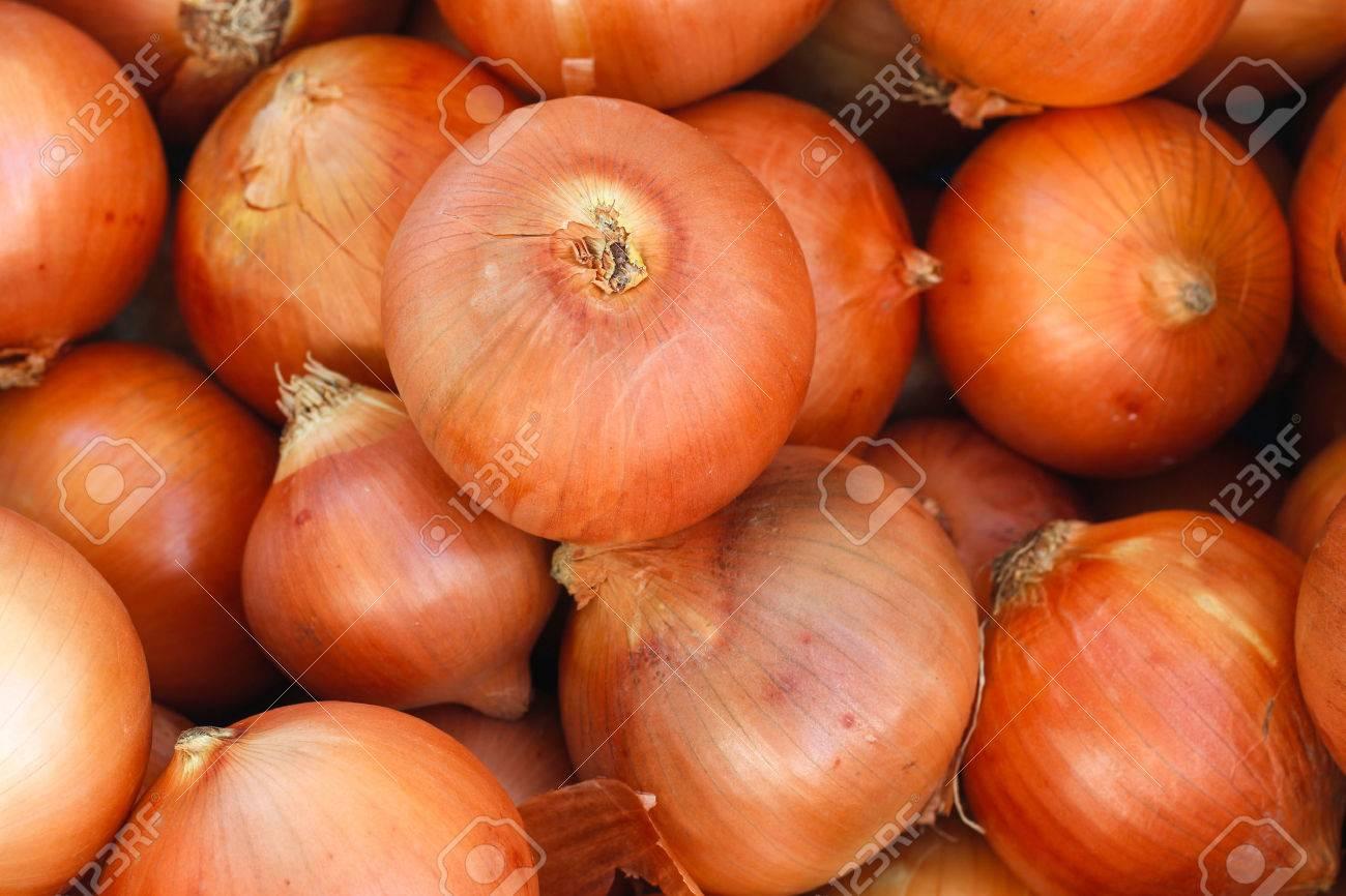 Как подготовить лук к хранению в домашних условиях Сад и огород 51