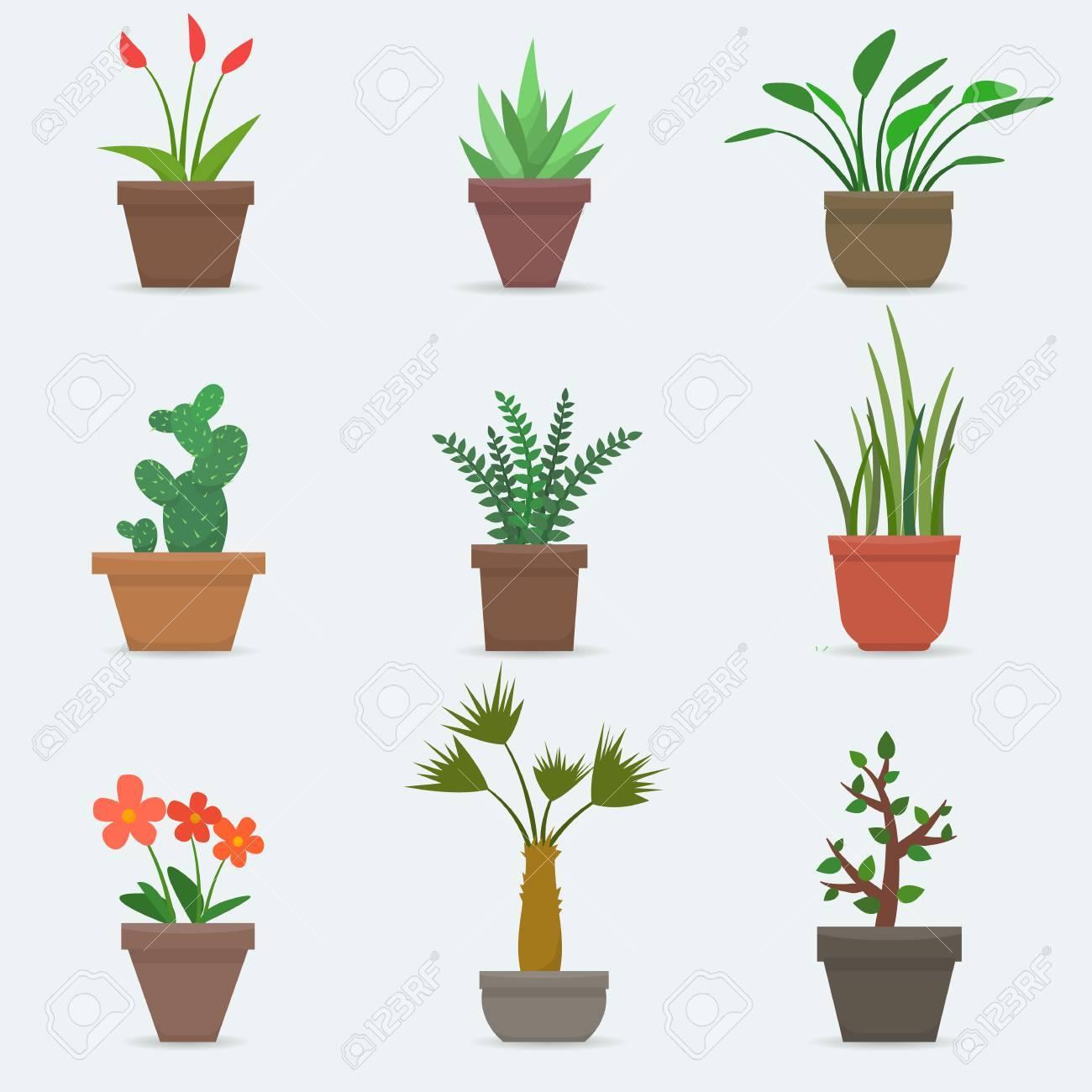 Blumen Für Die Wohnung zimmerpflanzen und blumen in töpfen. wohnung stil vektor