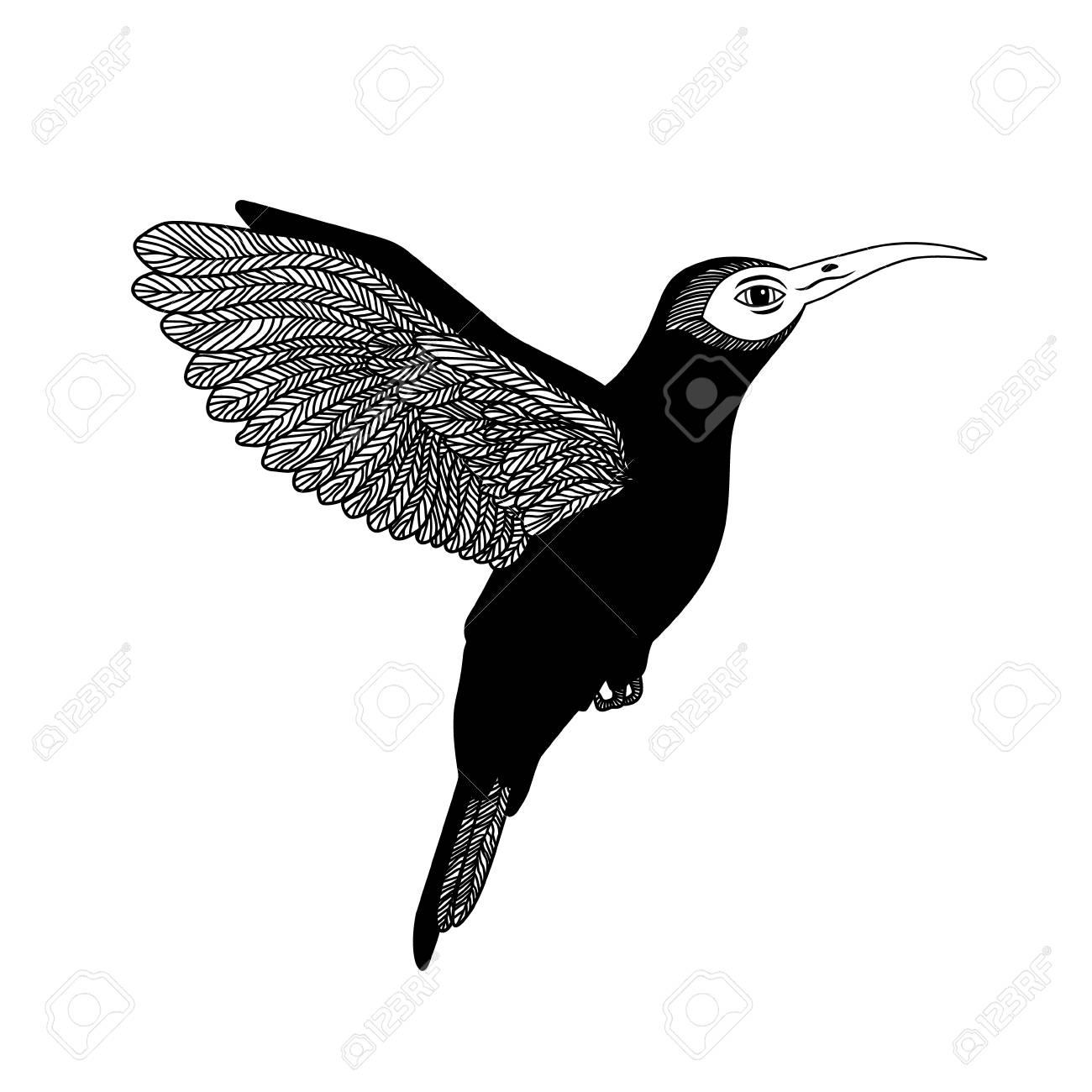 Colibrí Blanco Y Negro Aislado Puede Ser Usado Como Un Logo