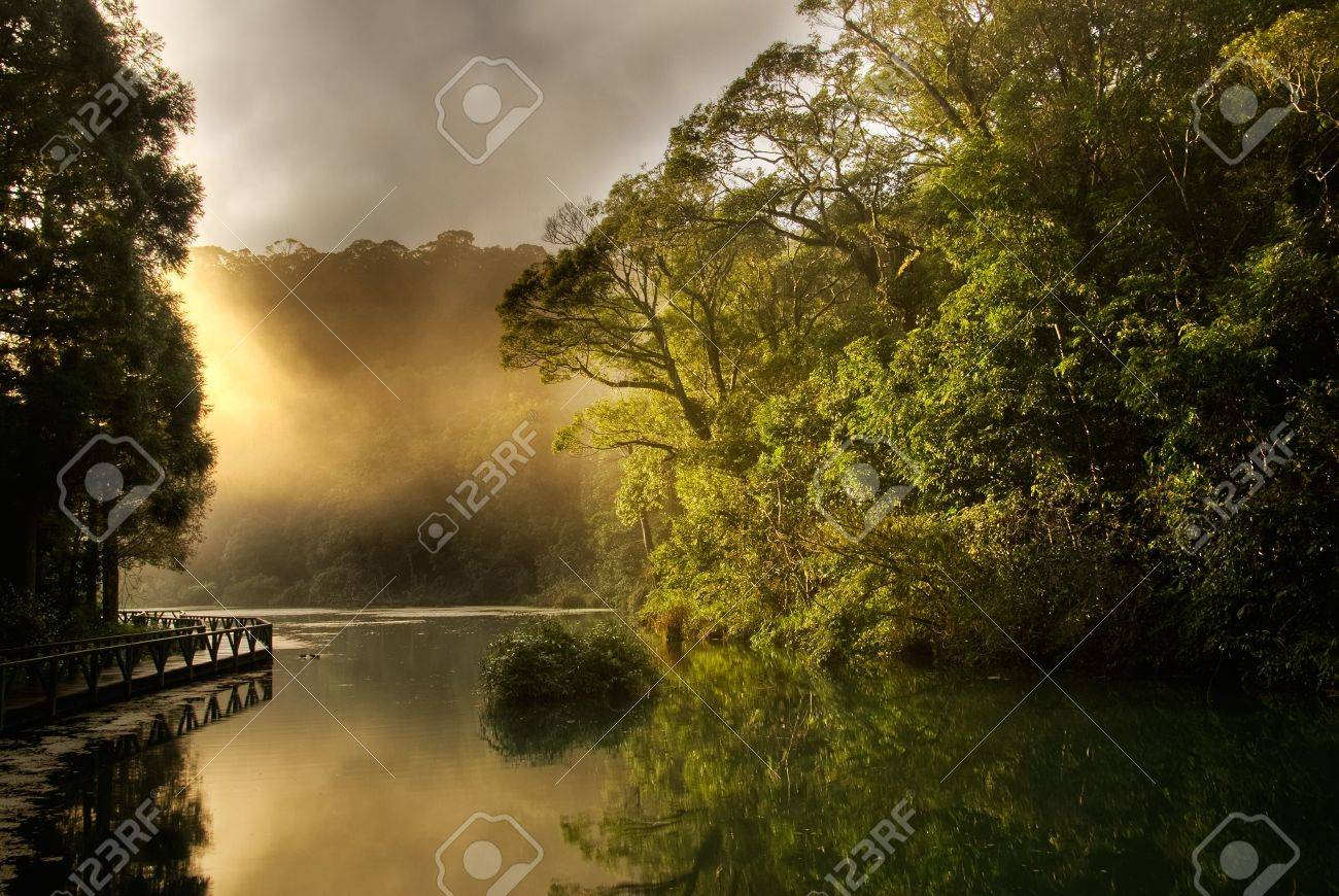 Landscape of morning sunrise with lake and forest. Stock Photo - 6053522