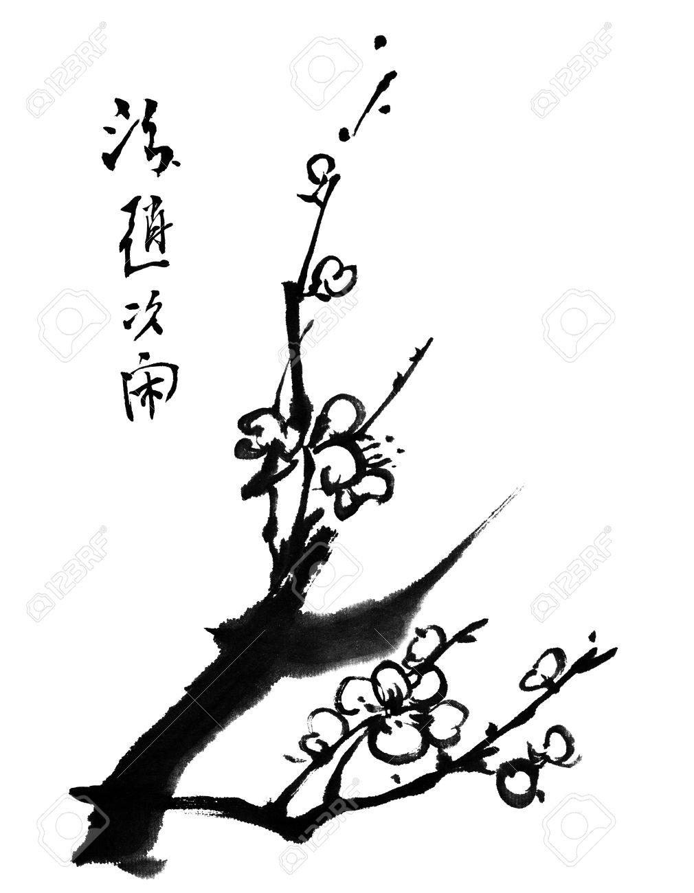 Chinese Painting Of Flowers Plum Blossom On White Background