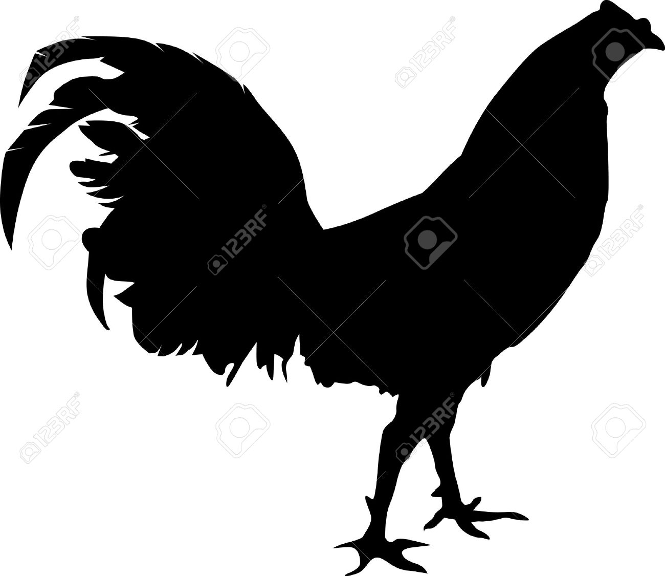 Fighting rooster silhouete walking around Stock Vector - 10002898