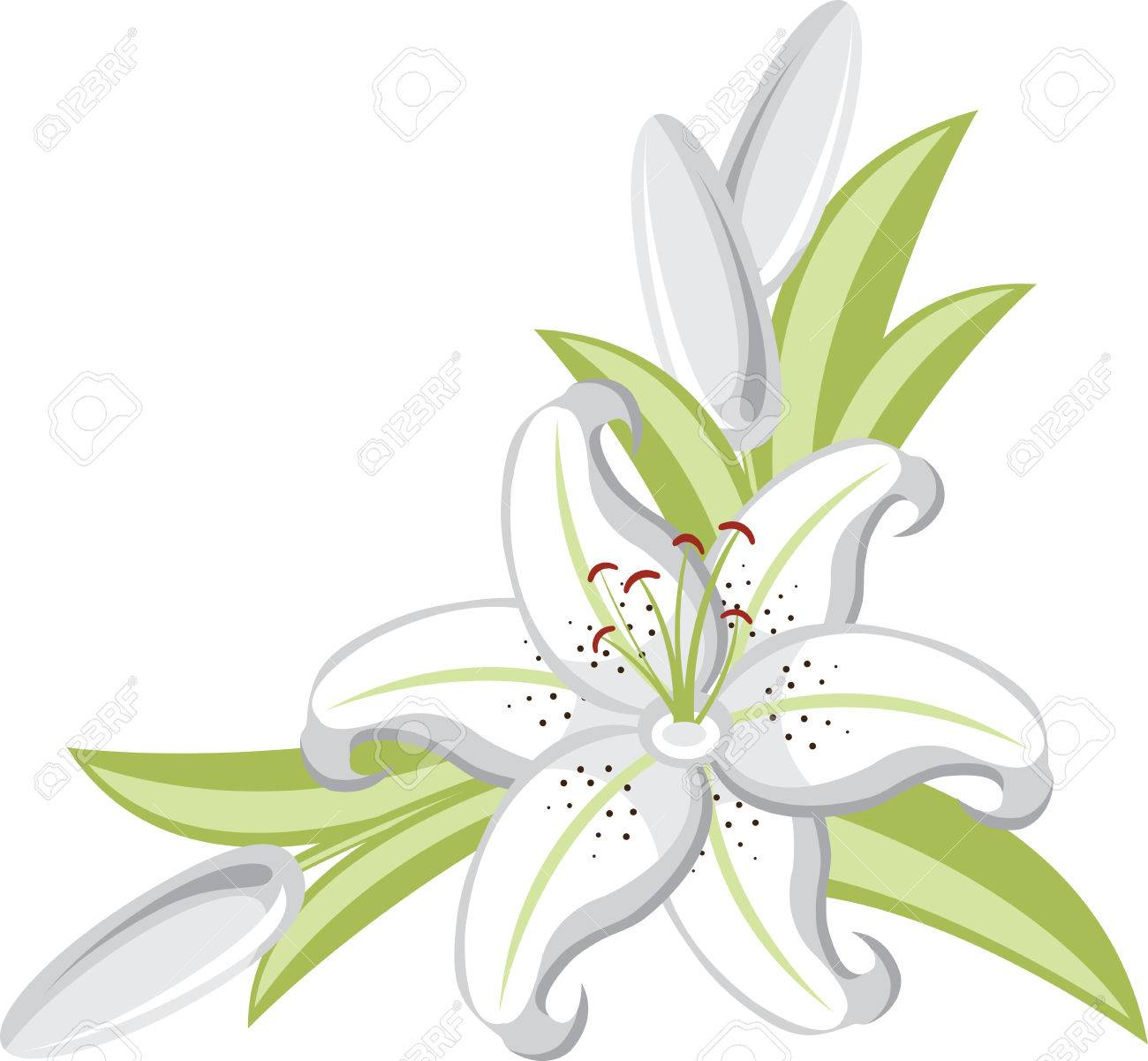 Lily Flowers Are Elegant And Classic Choice For Your Wedding