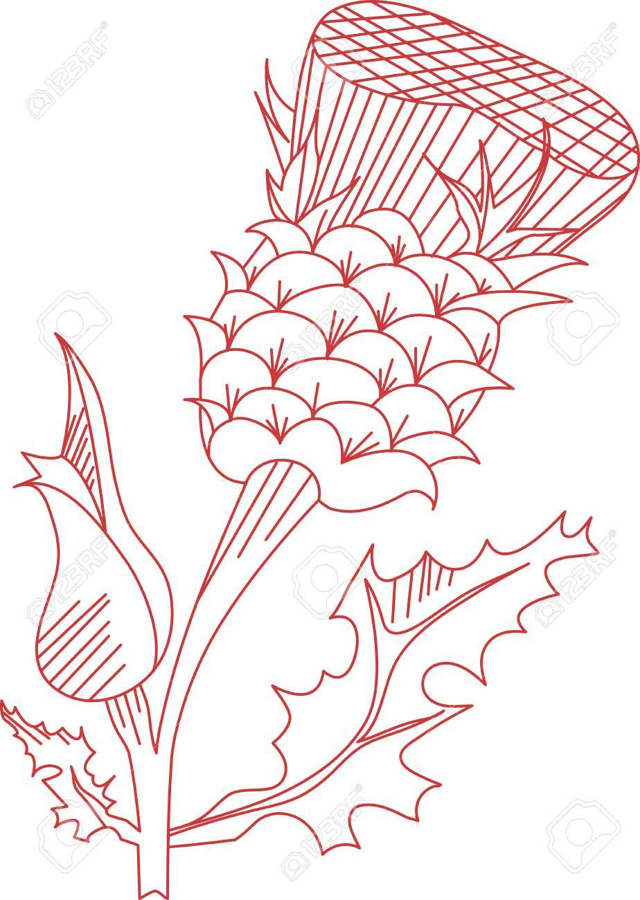 Thistle Is The Name For A Group Of Lovely Flowers This Redwork
