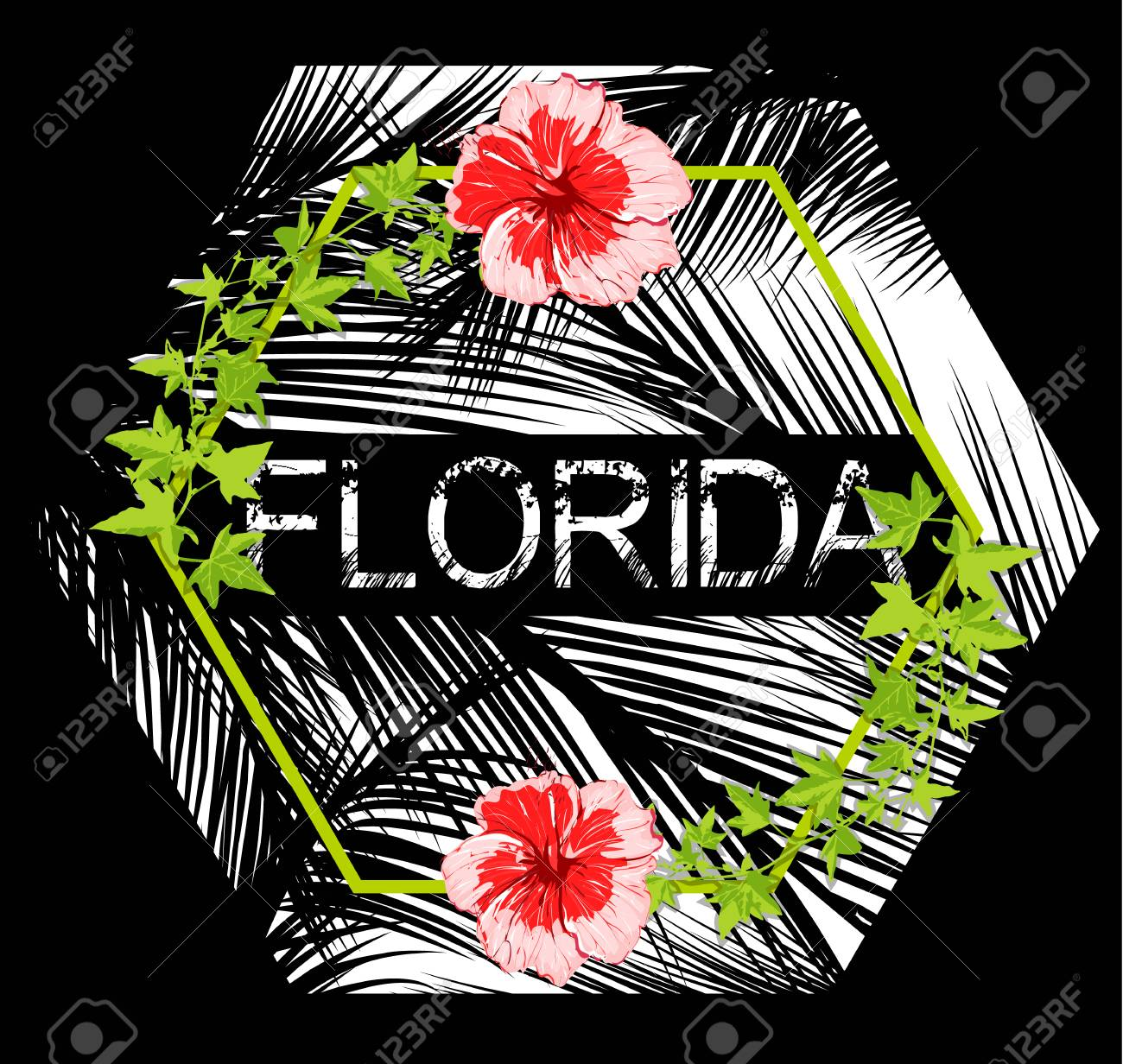 Florida Flowers Poster With Black Background Royalty Free Cliparts