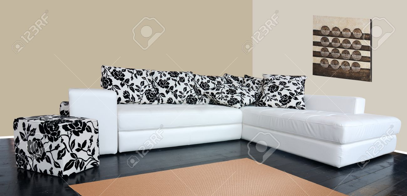 Modern Luxury Sofa With Skin Tapestry Stock Photo   10835943