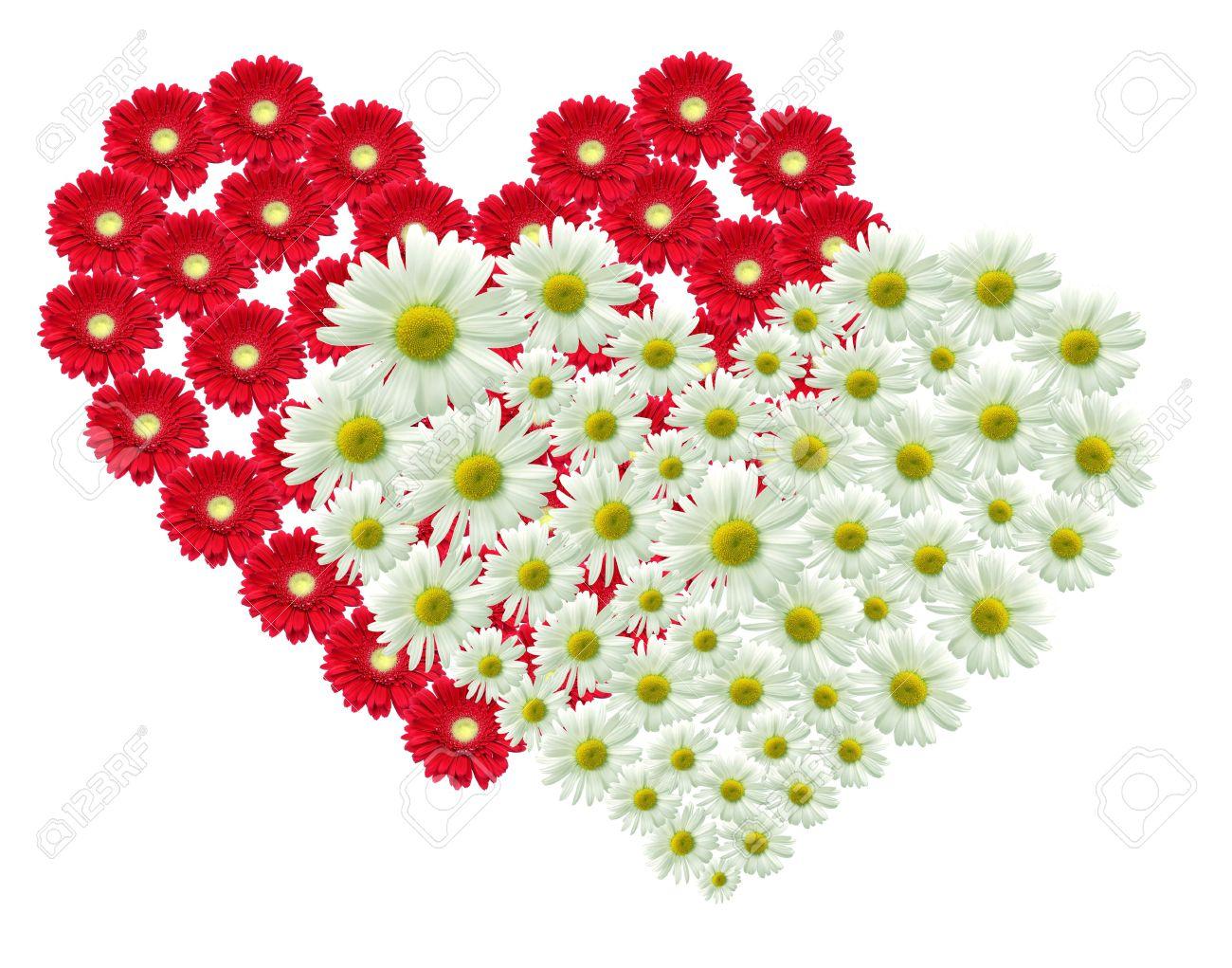 2 Gran Corazon Hecho De Flores Rojas Y Blancas Fotos Retratos