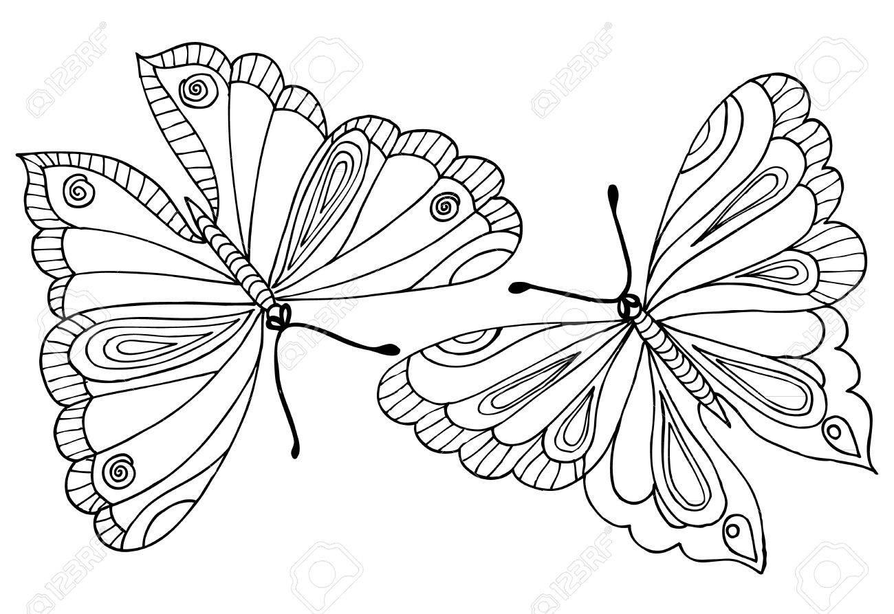 塗り絵の蝶の図面のベクトルのイラスト素材ベクタ Image 71872430