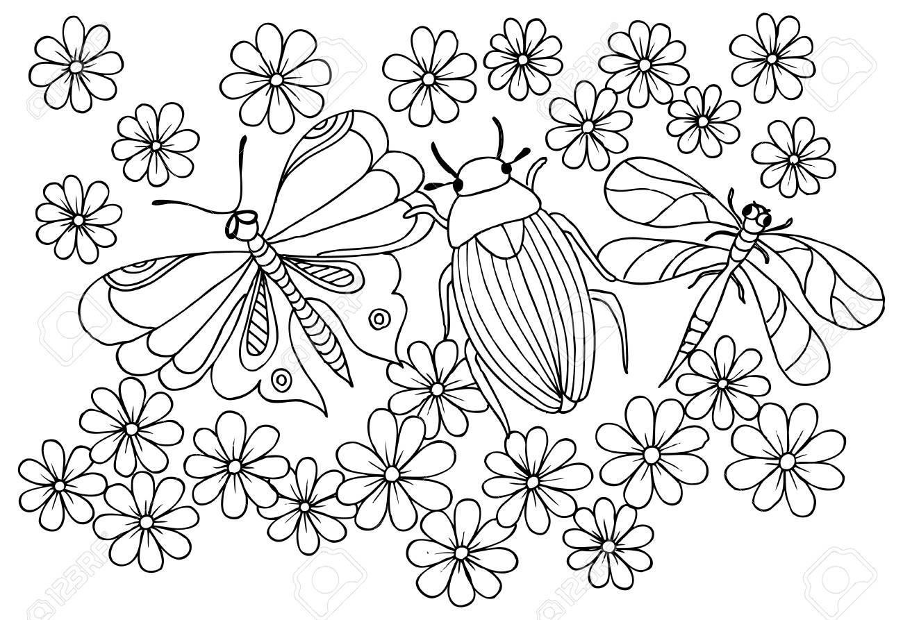 Patrón De Insecto, Libélula, Mariposa Y Flor Para Colorear ...