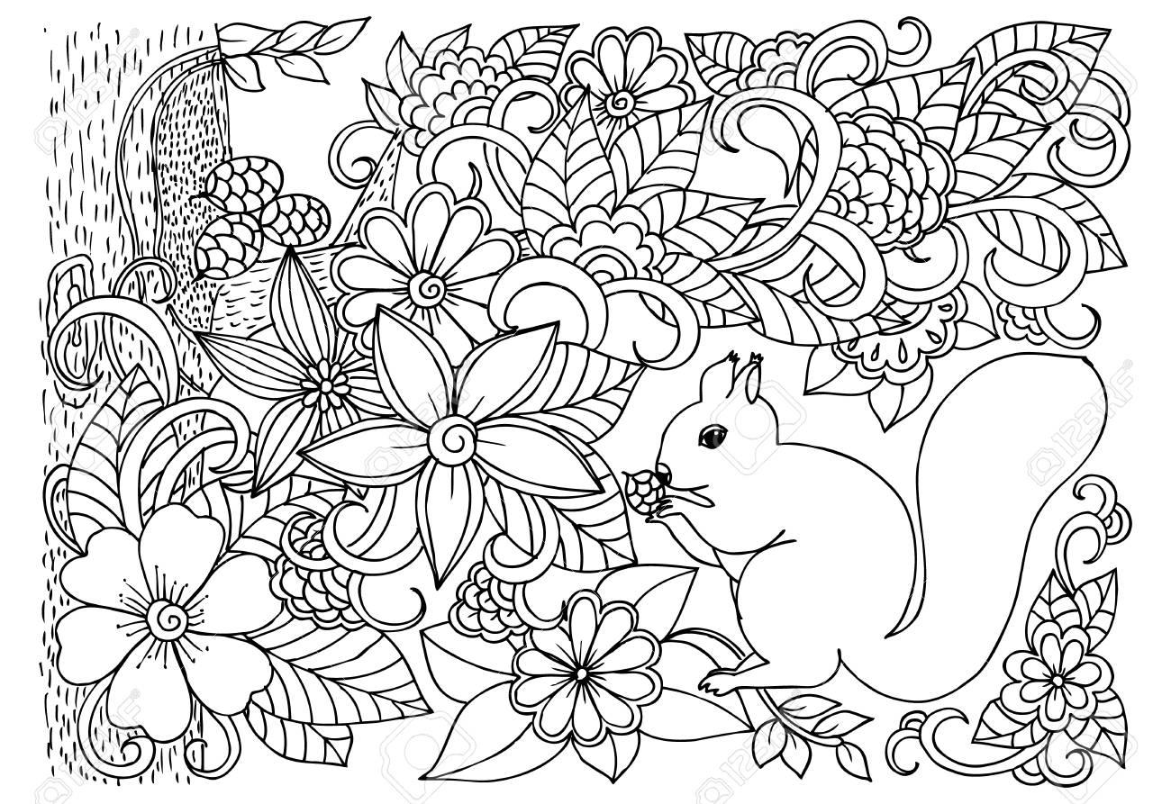 Ardilla Está Sentado En Un árbol Y Roe Cono Vector Monochromð Dibujo Para Colorear