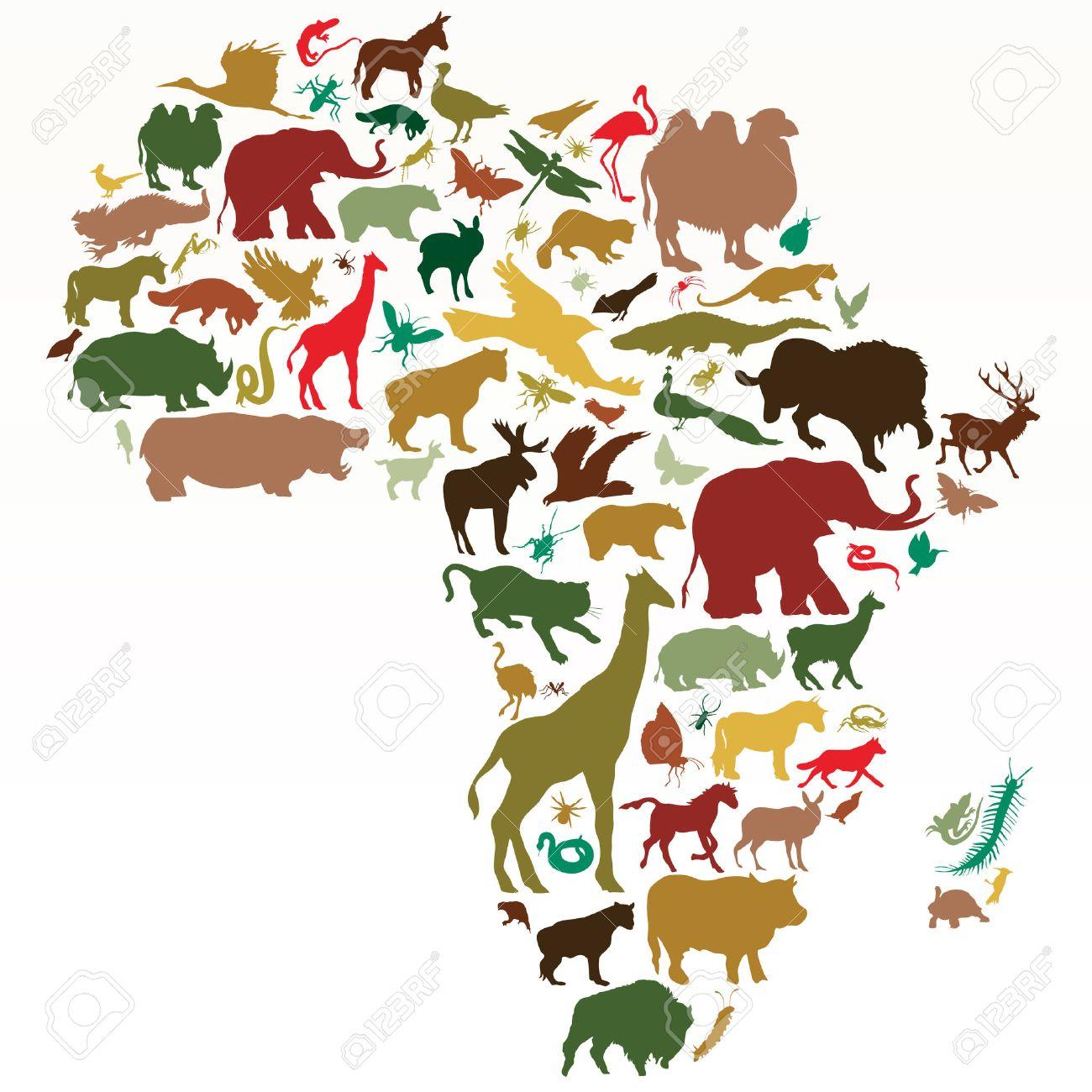 Vector - animals of af...