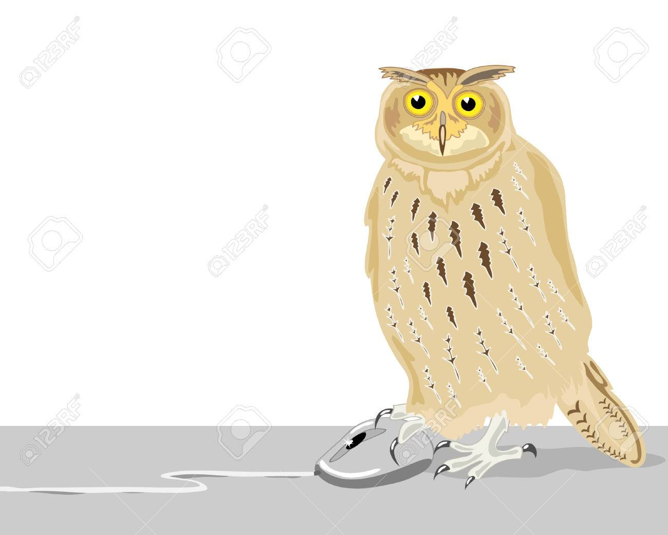 a hand drawn illustration of an owl with a computer mouse on a white background Stock Vector - 7111615