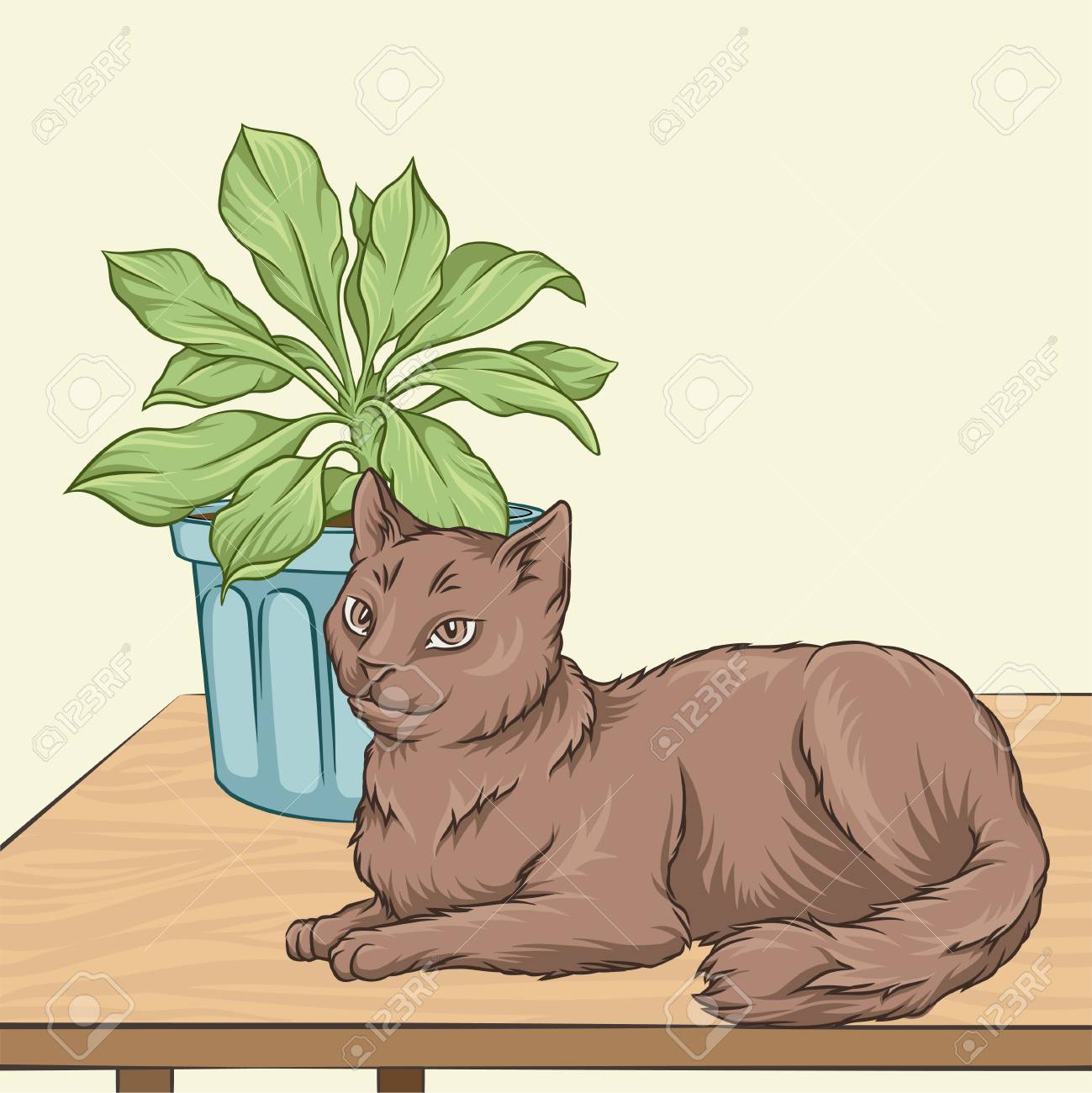 Cute Brown Cat Pet Animal Lying On A Wooden Table Room Interior Vintage Style Home