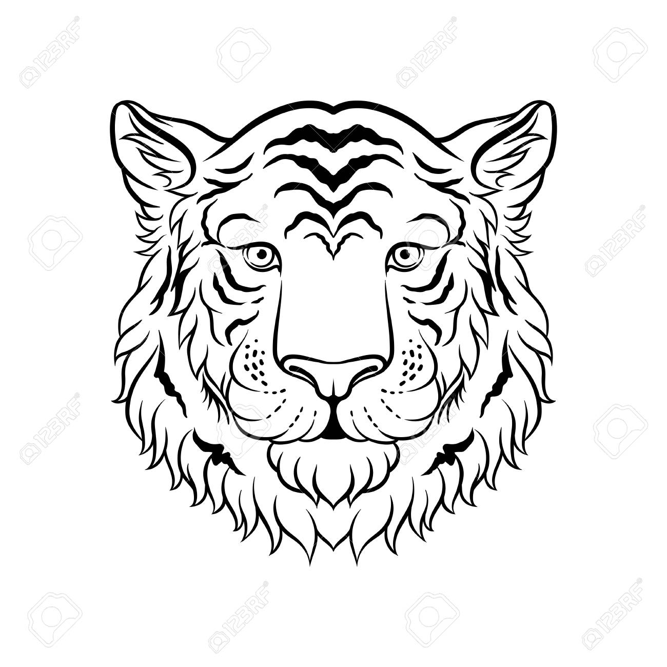 Black and white sketch of tigers head face of wild animal hand