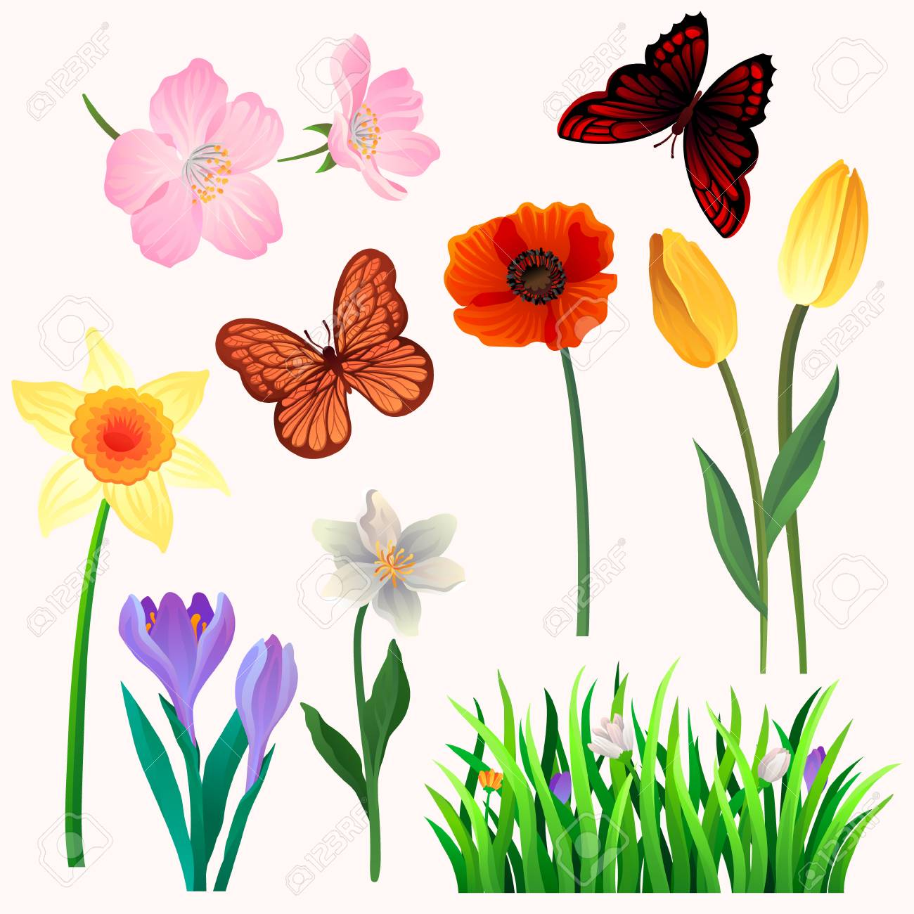 Colorful Set Of Beautiful Spring Flowers And Butterflies Blooming