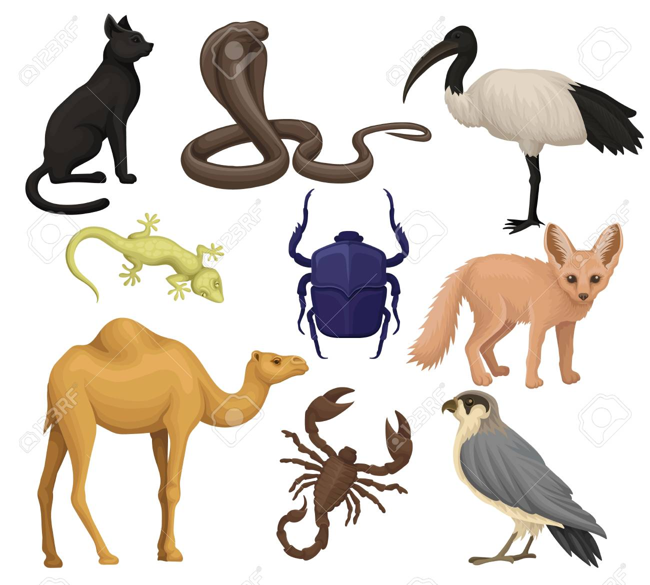 Detailed flat vector set of various Egyptian animals, birds and insects. Ibis, fennec fox, scarab beetle, small-spotted lizard. African wildlife - 101963602