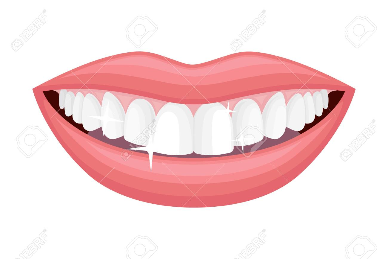 Smiling Mouth Showing White Healthy Teeth Vector Illustration - 149905575