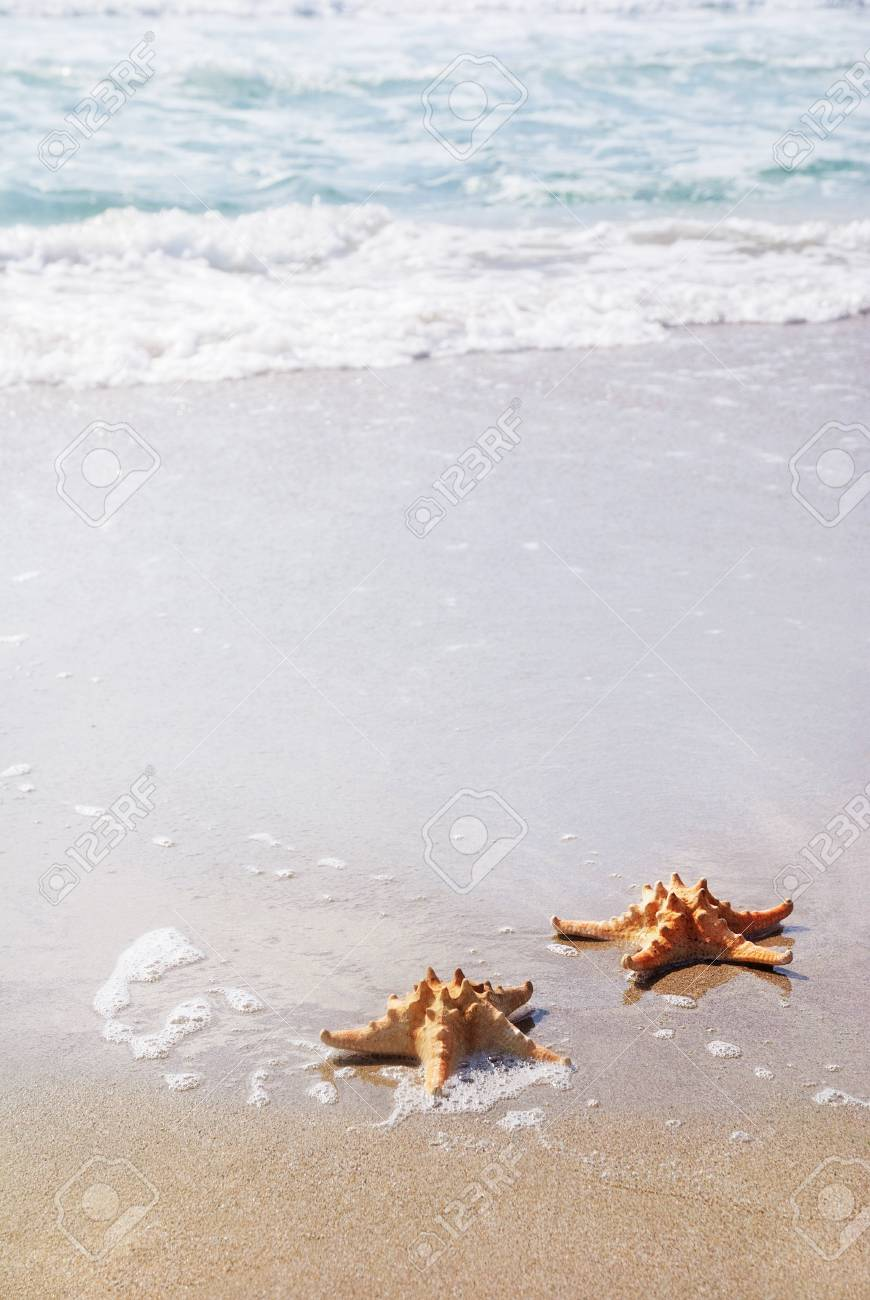 two sea-stars lying on sand beach against waves Stock Photo - 18260001