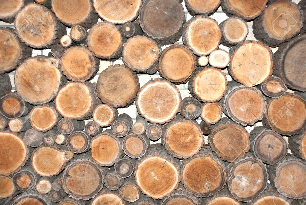Natural background of timber (cut trees) Stock Photo - 18260301