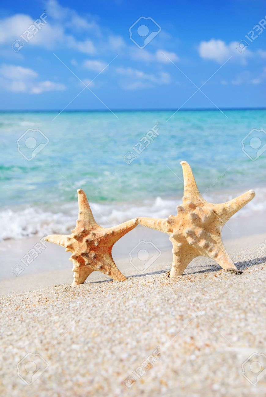 holiday concept - two sea-stars walking on sand beach against waves background Stock Photo - 18259874
