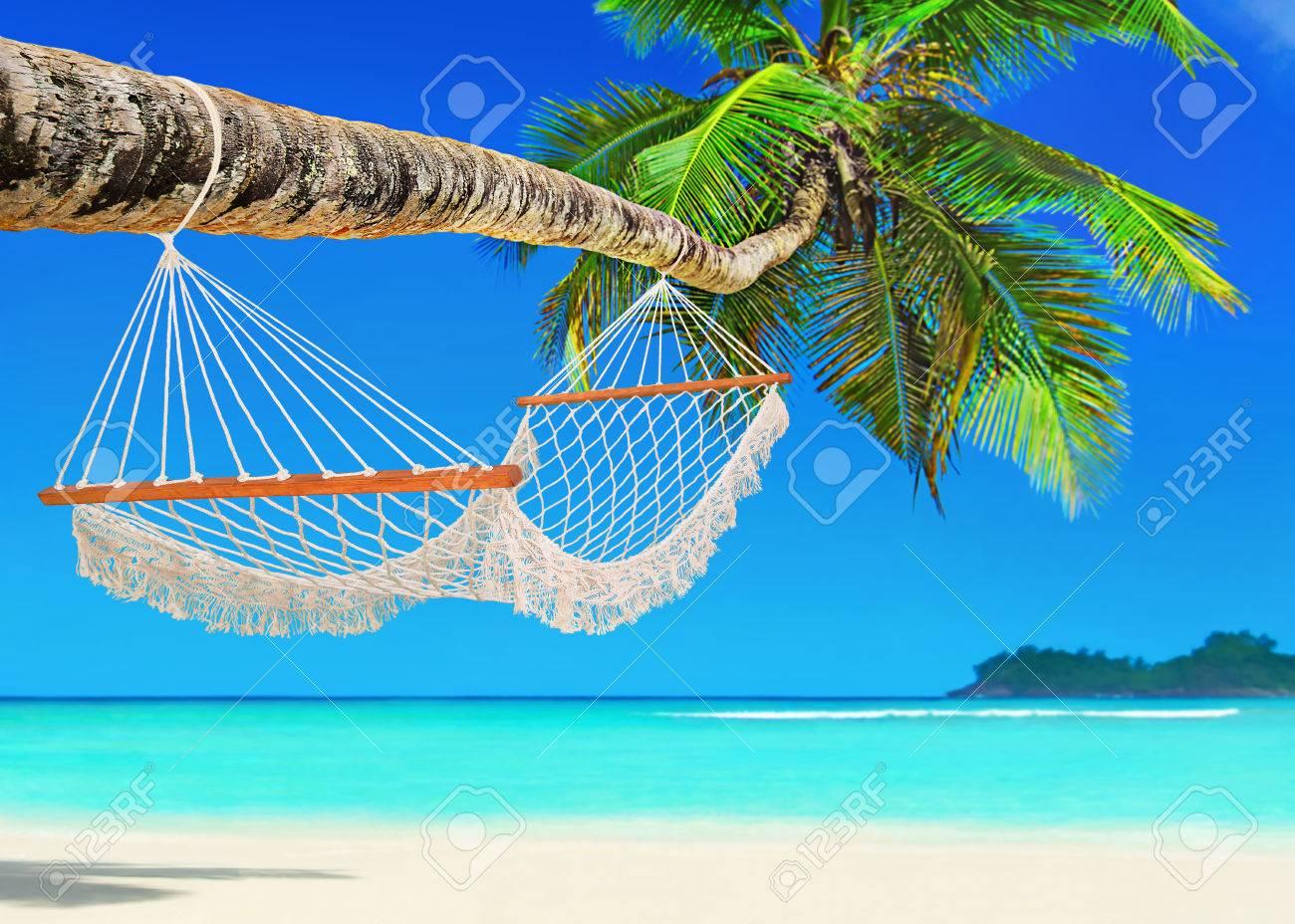 """Résultat de recherche d'images pour """"photos plages de sable cocotiers"""""""