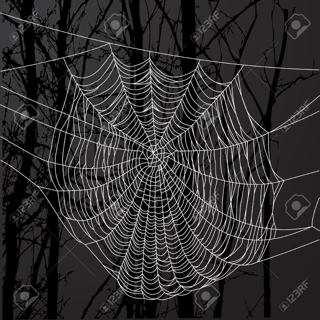 Realistic spider web over black background with tree. Stock Vector - 17641716
