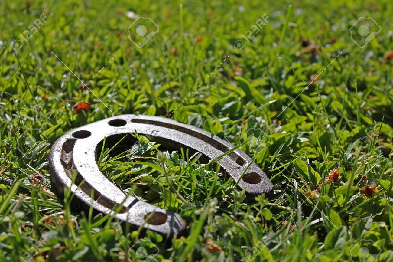 Shiny lucky horseshoe laying in grass symbol for good luck shiny lucky horseshoe laying in grass symbol for good luck grassy space as background biocorpaavc Choice Image