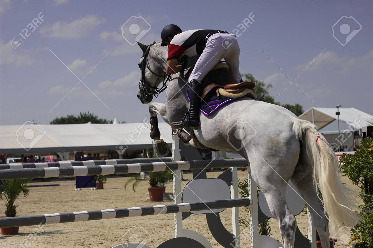 Horse Jumps An Obstacle On Competitions Show Jumping Show Jumping Stock Photo Picture And Royalty Free Image Image 62518262