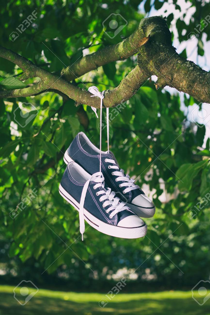 ddedba4210ff New Sneakers Hanging On A Tree Branch