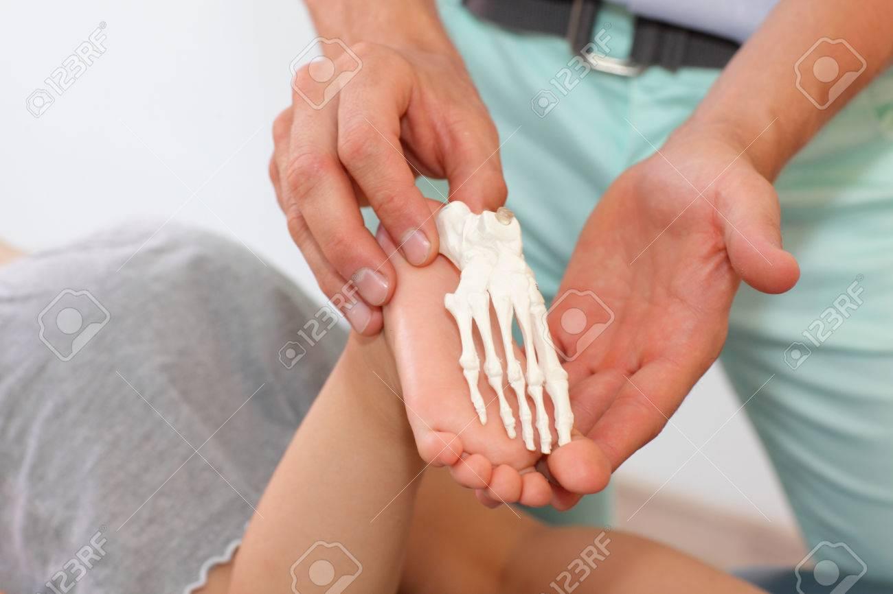 Anatomie Lektion Auf Kinder Vergleich Des Kindes Fuß Mit Einem ...