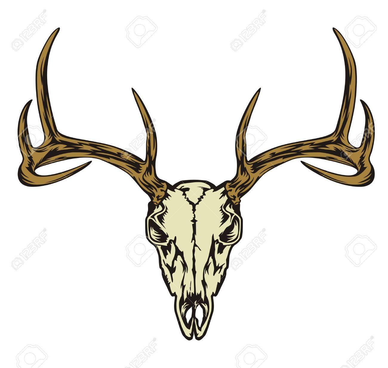 Crâne Tête De Cerf Dessin Vectoriel Abstrait