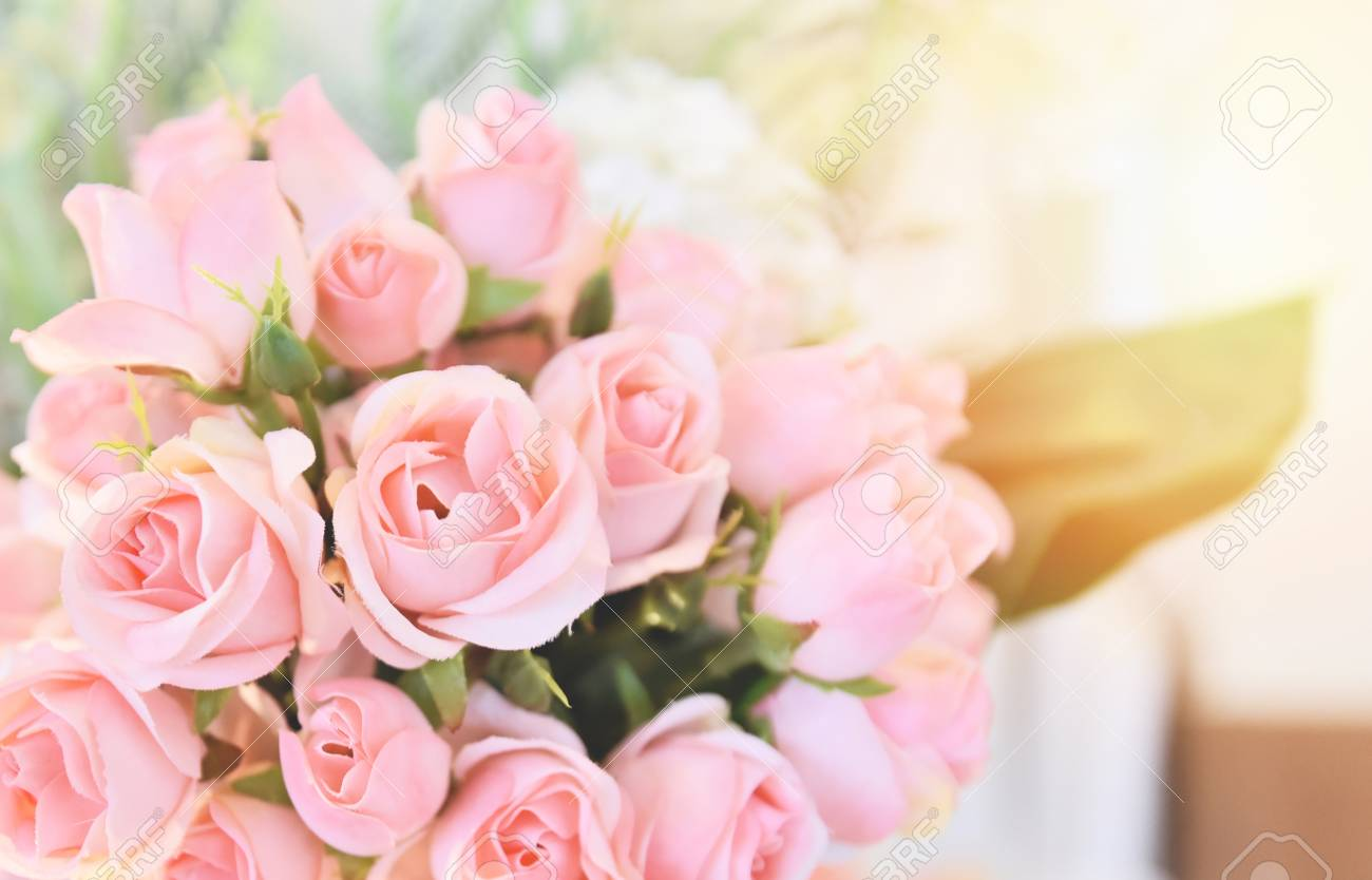 pink rose flower / soft and light pink roses blooming spring bouquet on table blur background - 116865484