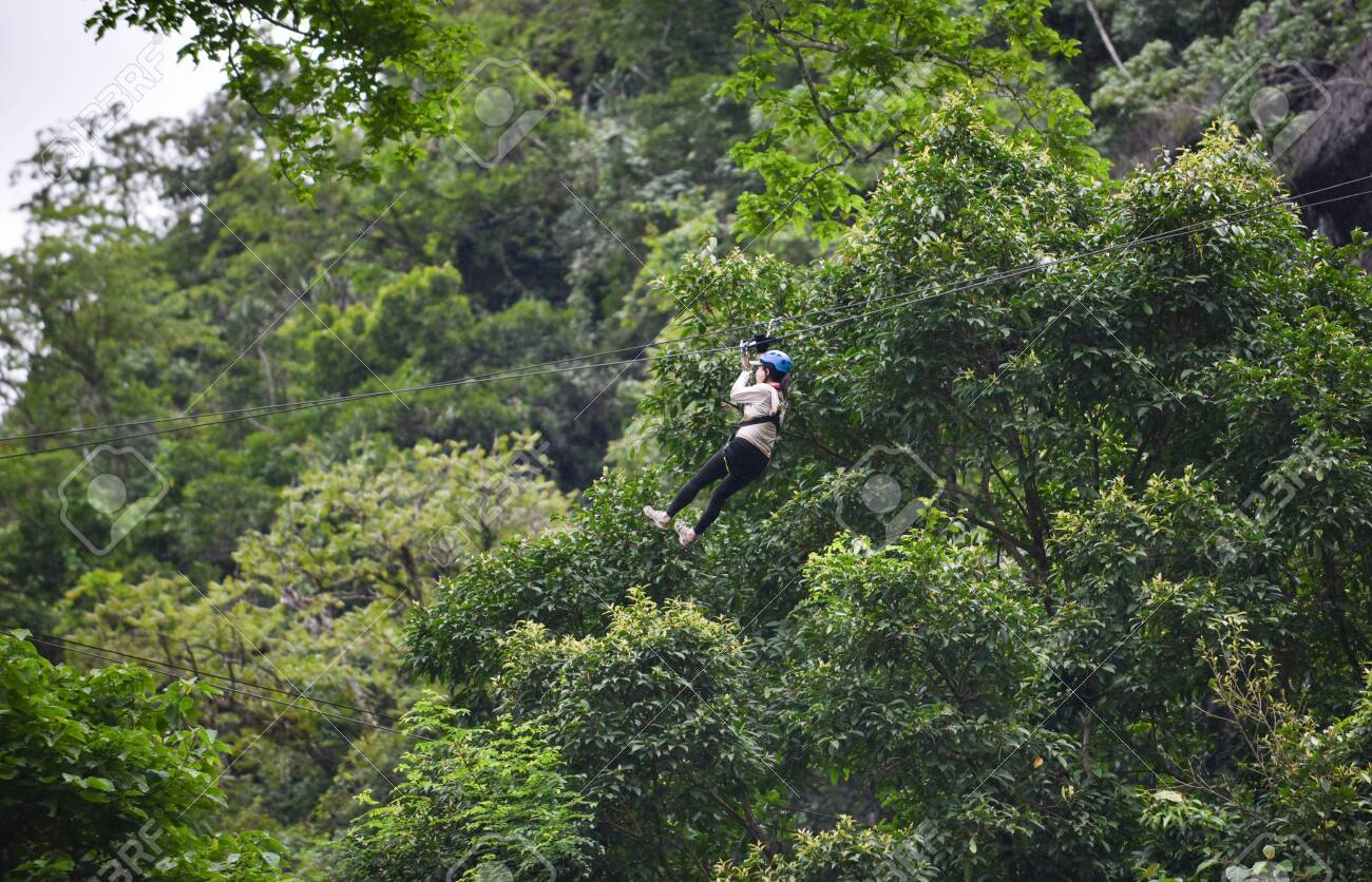 Zipline exciting sport adventure activity hanging on the big tree in the forest at vangvieng laos - 122275188