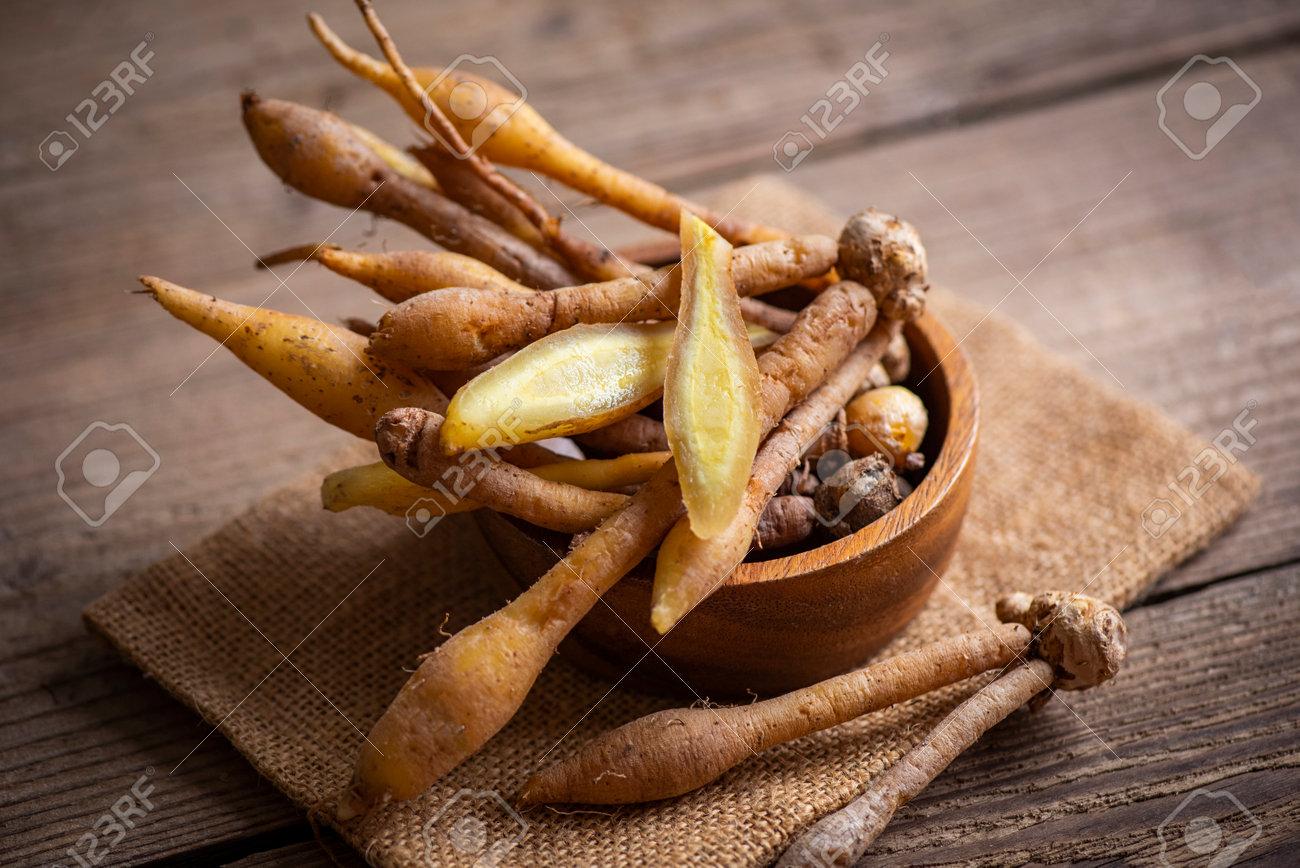 Kaempfer root for food and Thai or Chinese herbal medicine nature - Other names Fingerroot ( Chinese Ginger, Galingale, Kaempfer, Boesenbergia rotunda, Krachai ) - 173248662