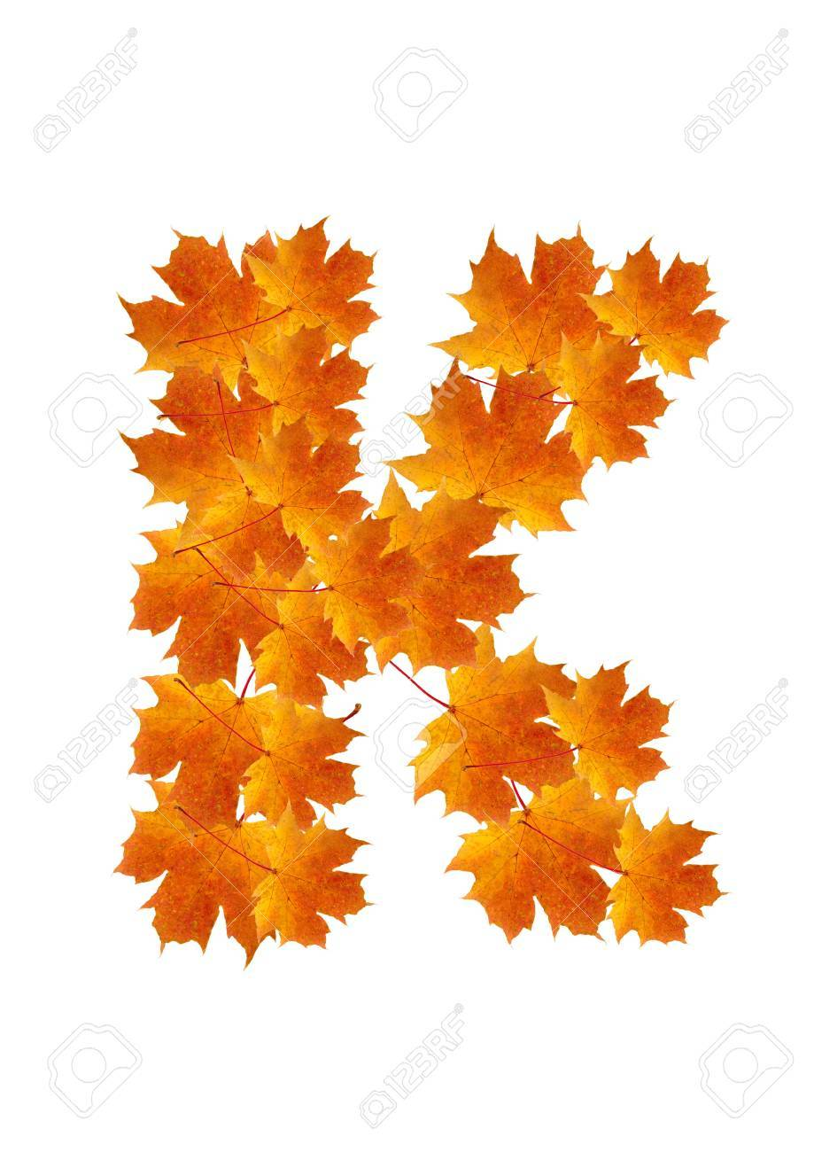 Letter K from orange autumn maple leaves Stock Photo - 7653162