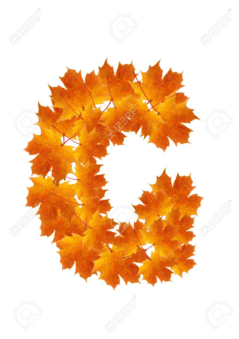 Letter G from orange autumn maple leaves Stock Photo - 7653165