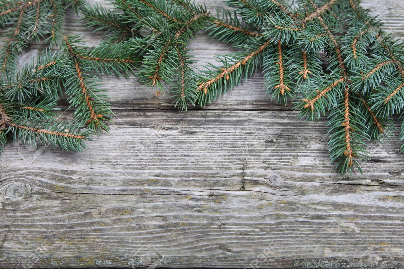 Christmas fir tree on the wooden board Stock Photo - 16920669