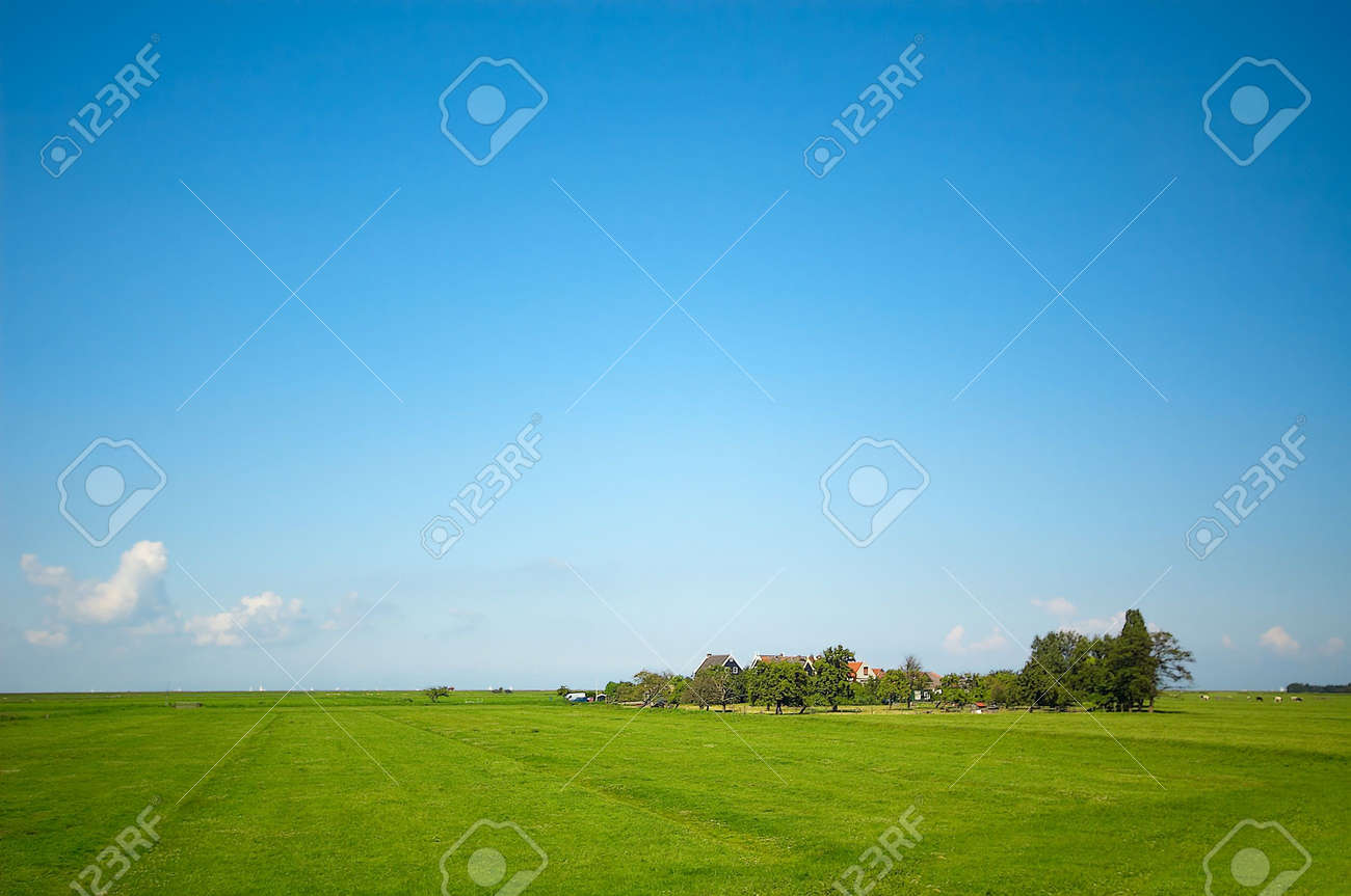 a summer landscape Stock Photo - 488825