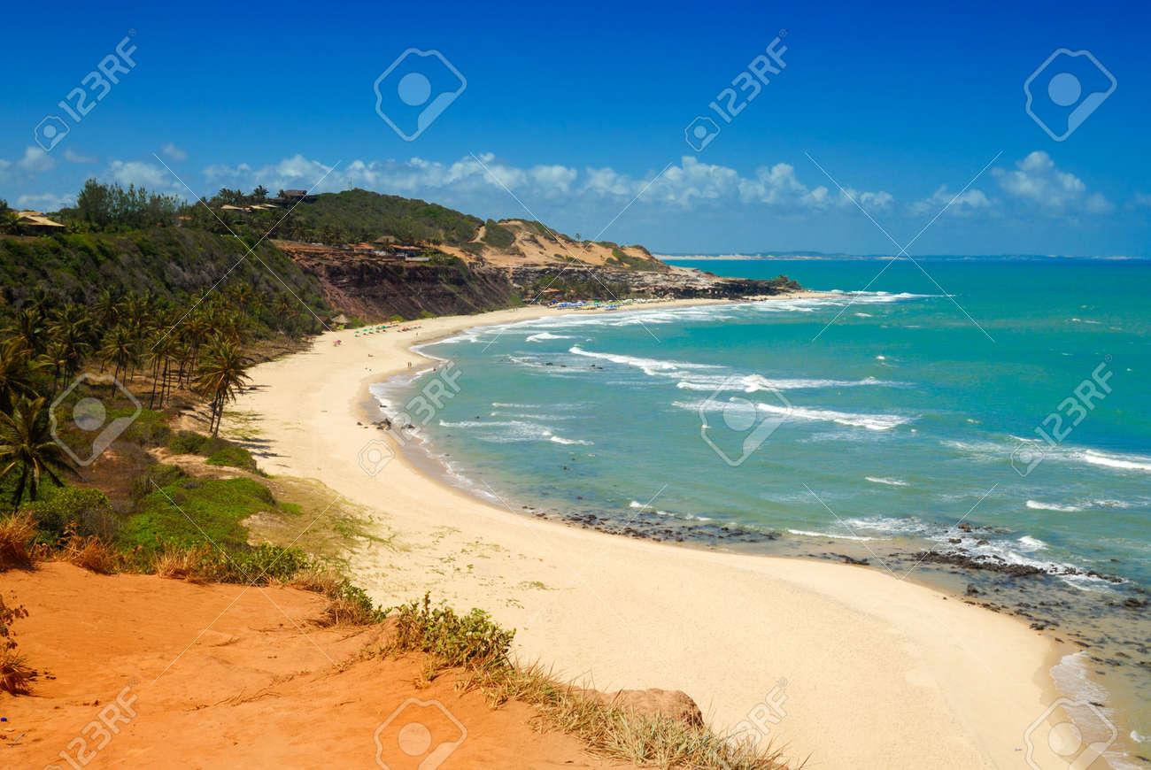 Beautiful beach with palm trees at Praia do Amor near Pipa Brazil Standard-Bild - 6063989