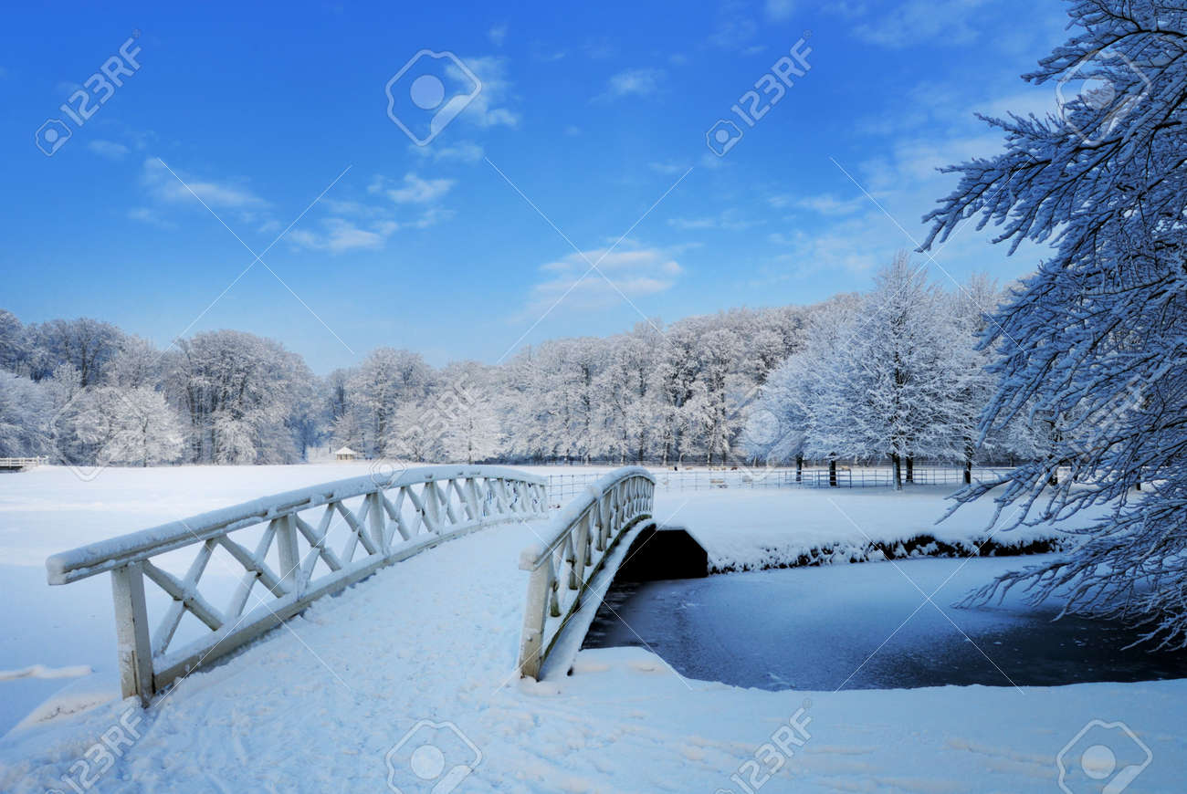 Beautiful winter landscape in the Netherlands ( Elswout Overveen) Standard-Bild - 6228017